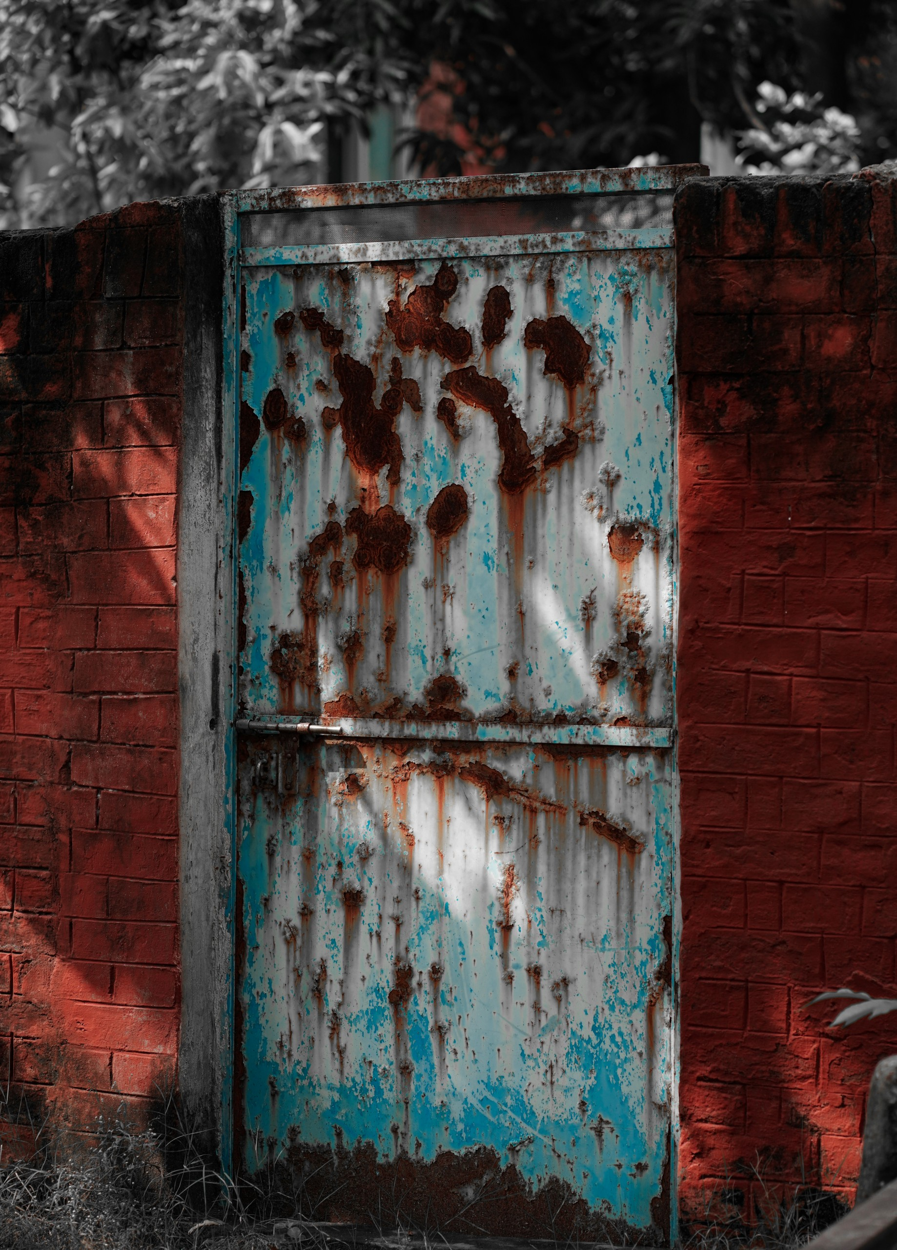A Rusted Old Door