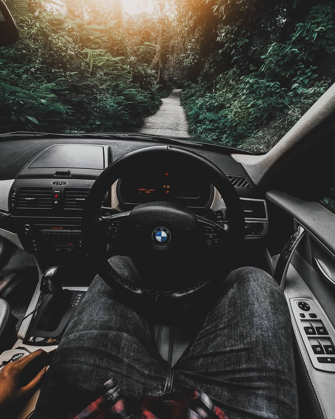 bmw car driver in jungle
