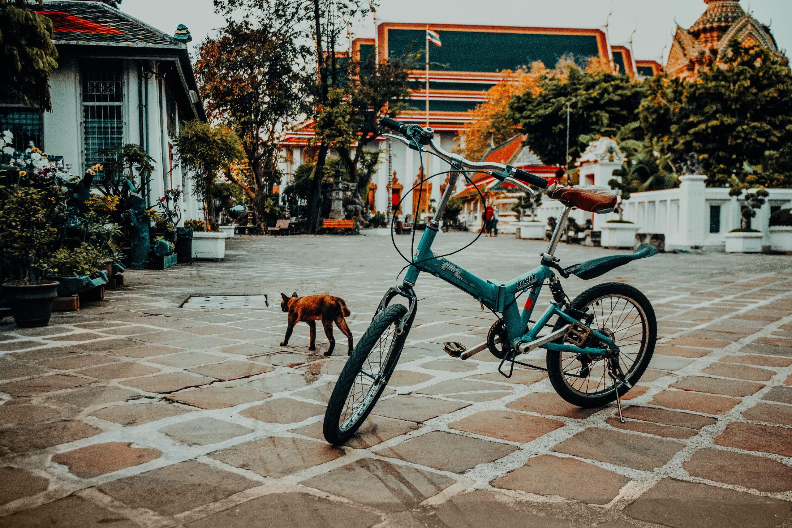 Bicycle in Wat Pho – Thailand