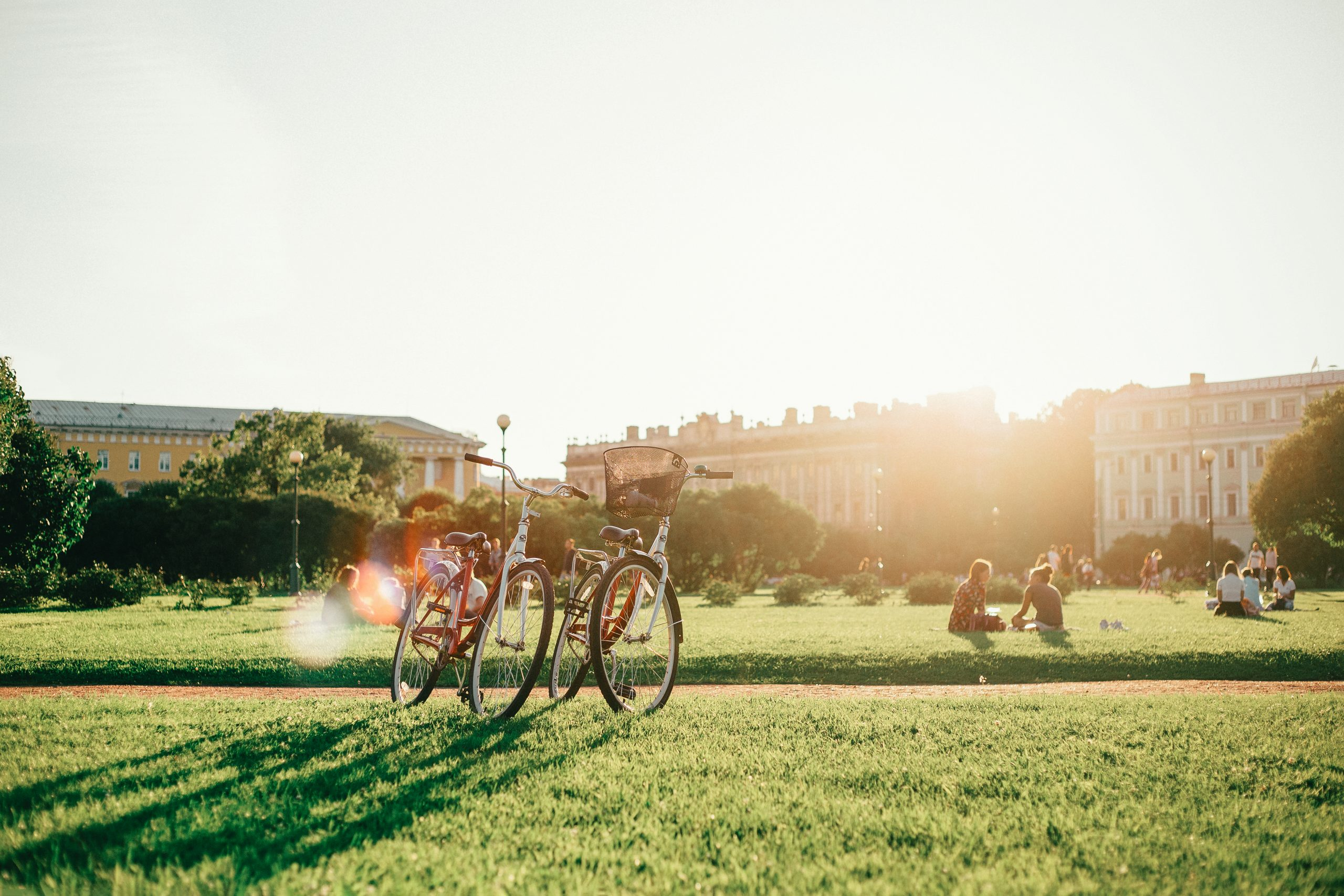 Bicycles in a park