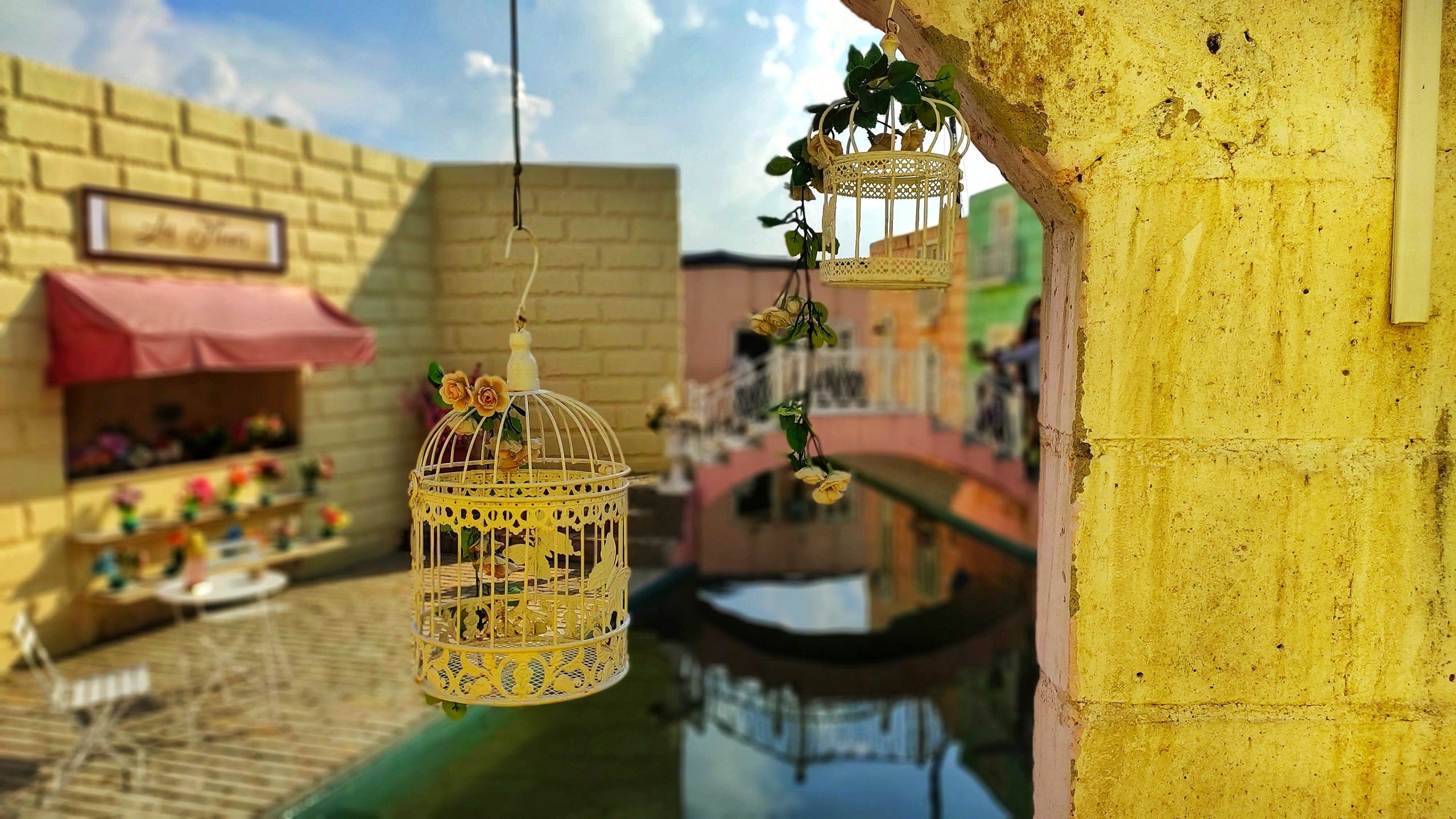 Bird cage in a house