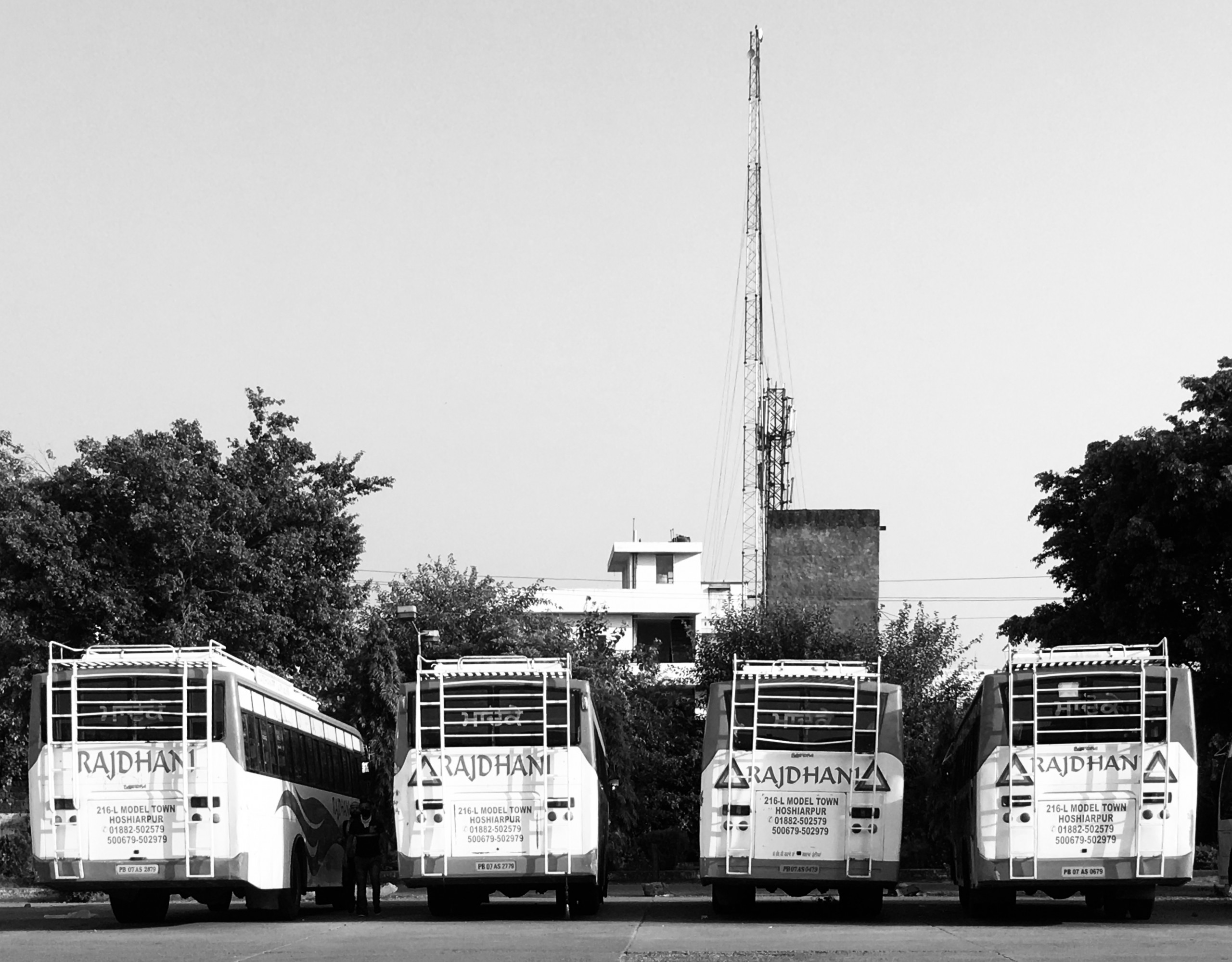 Buses in black and white