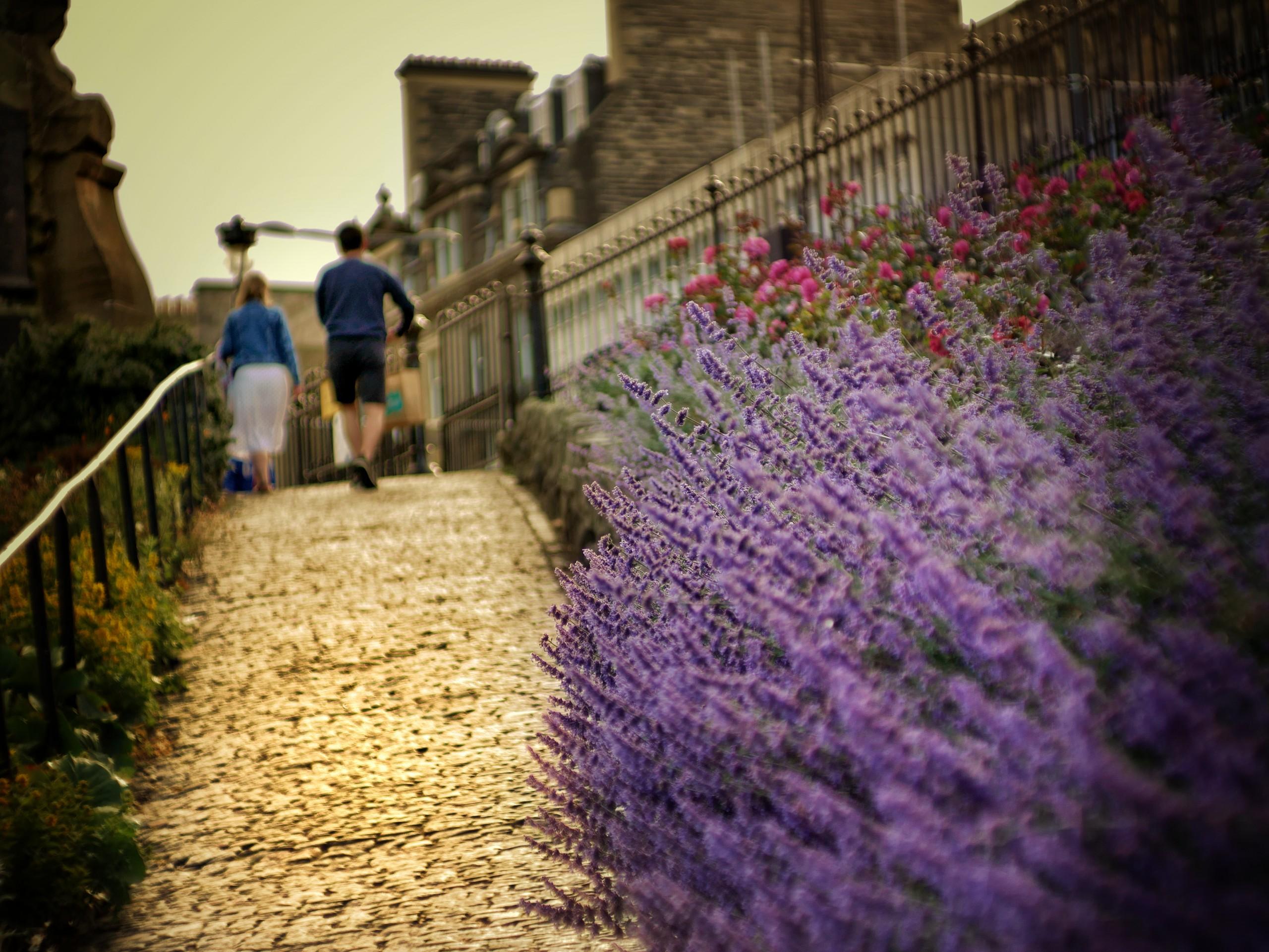 Couple walking on a sidewalk