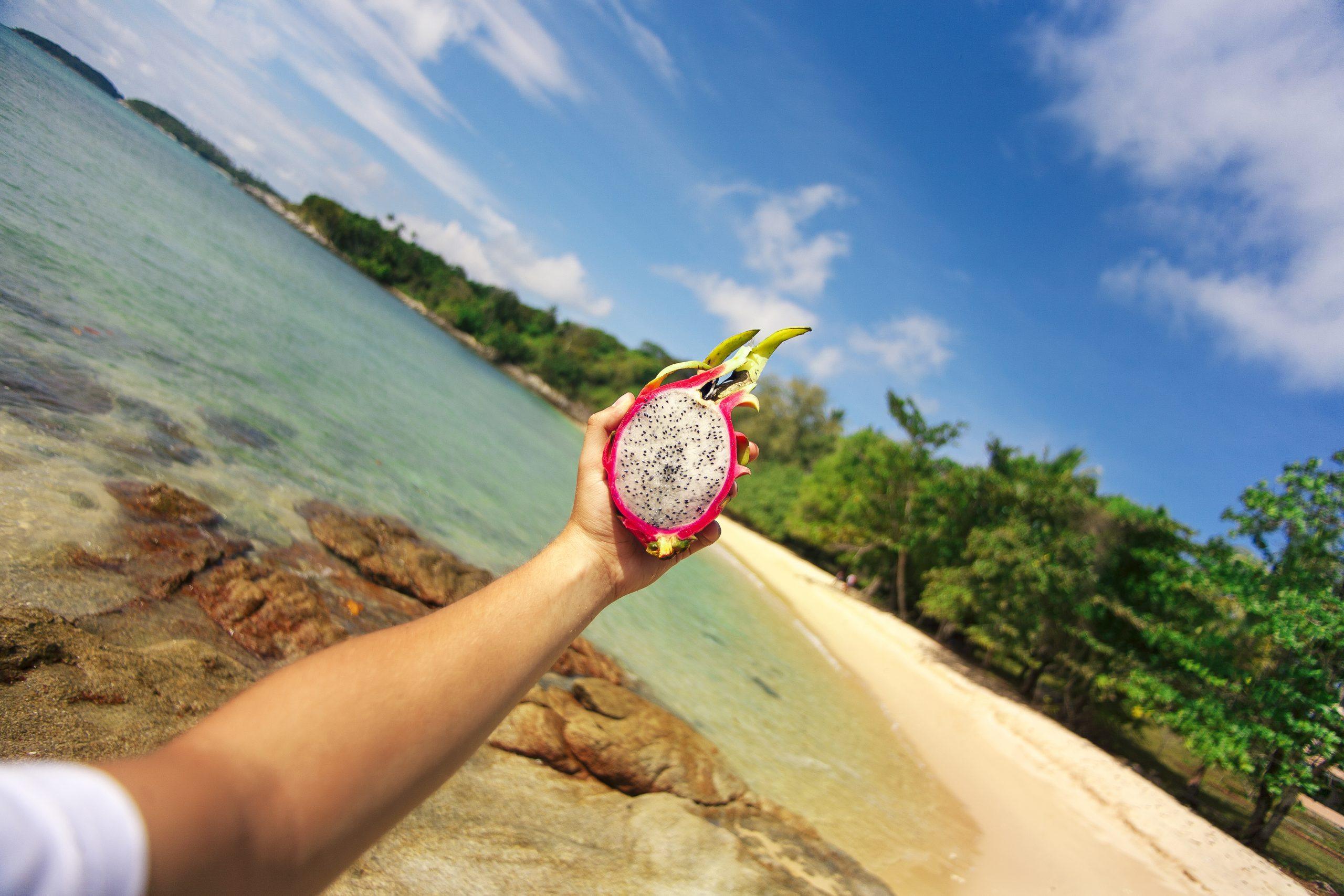 Dragonfruit on a Beach