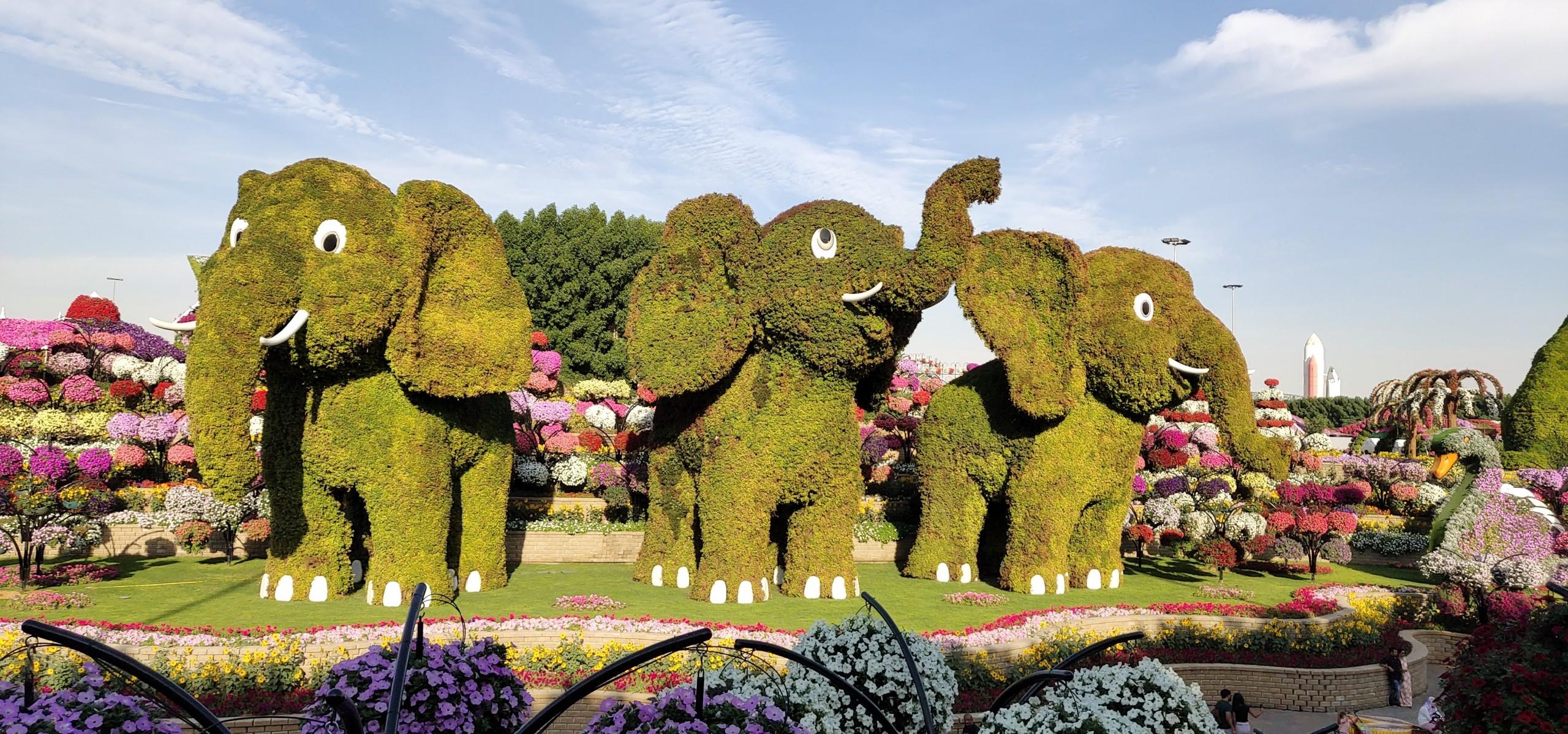 Elephant Art in a Garden