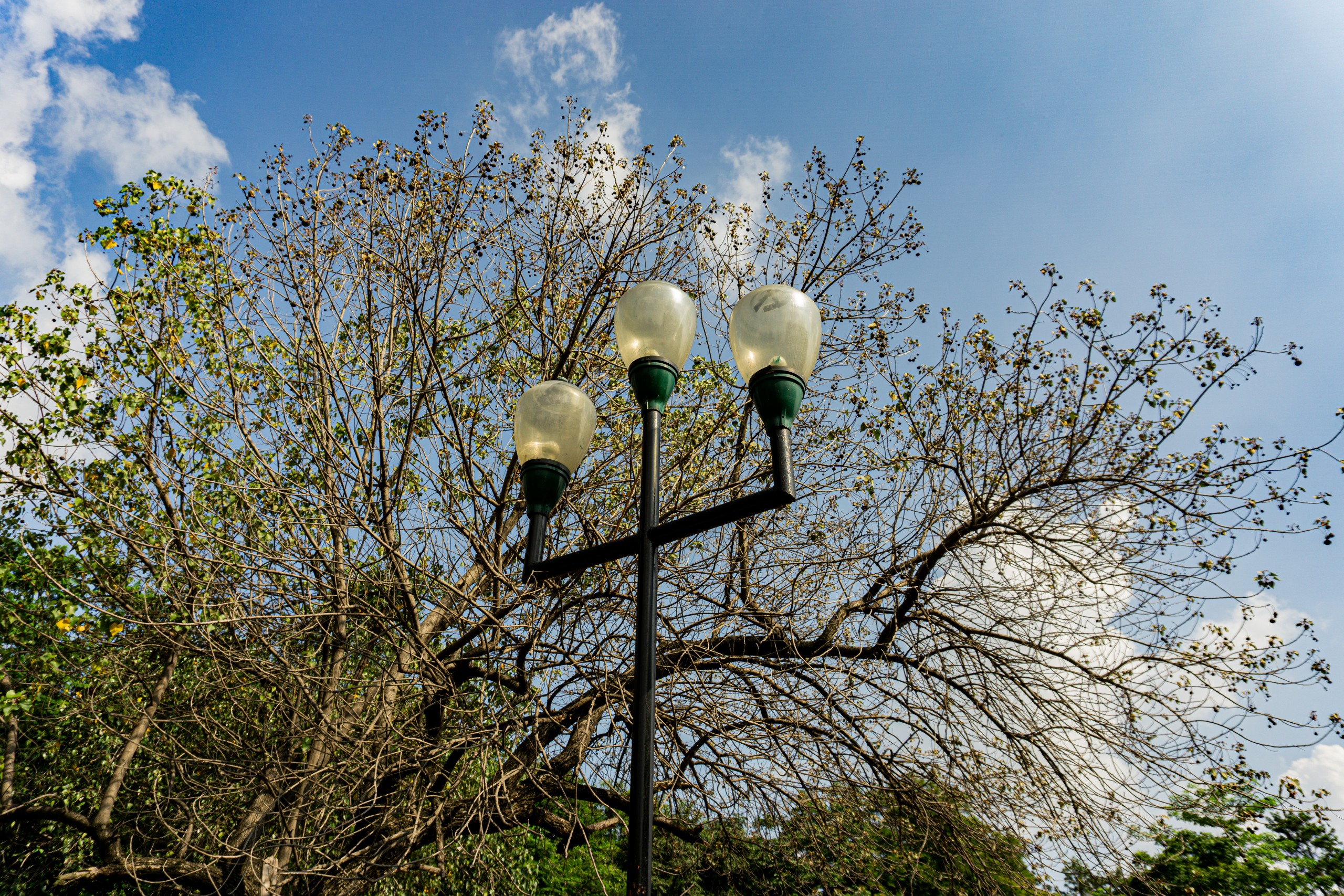 Lamp post on the street