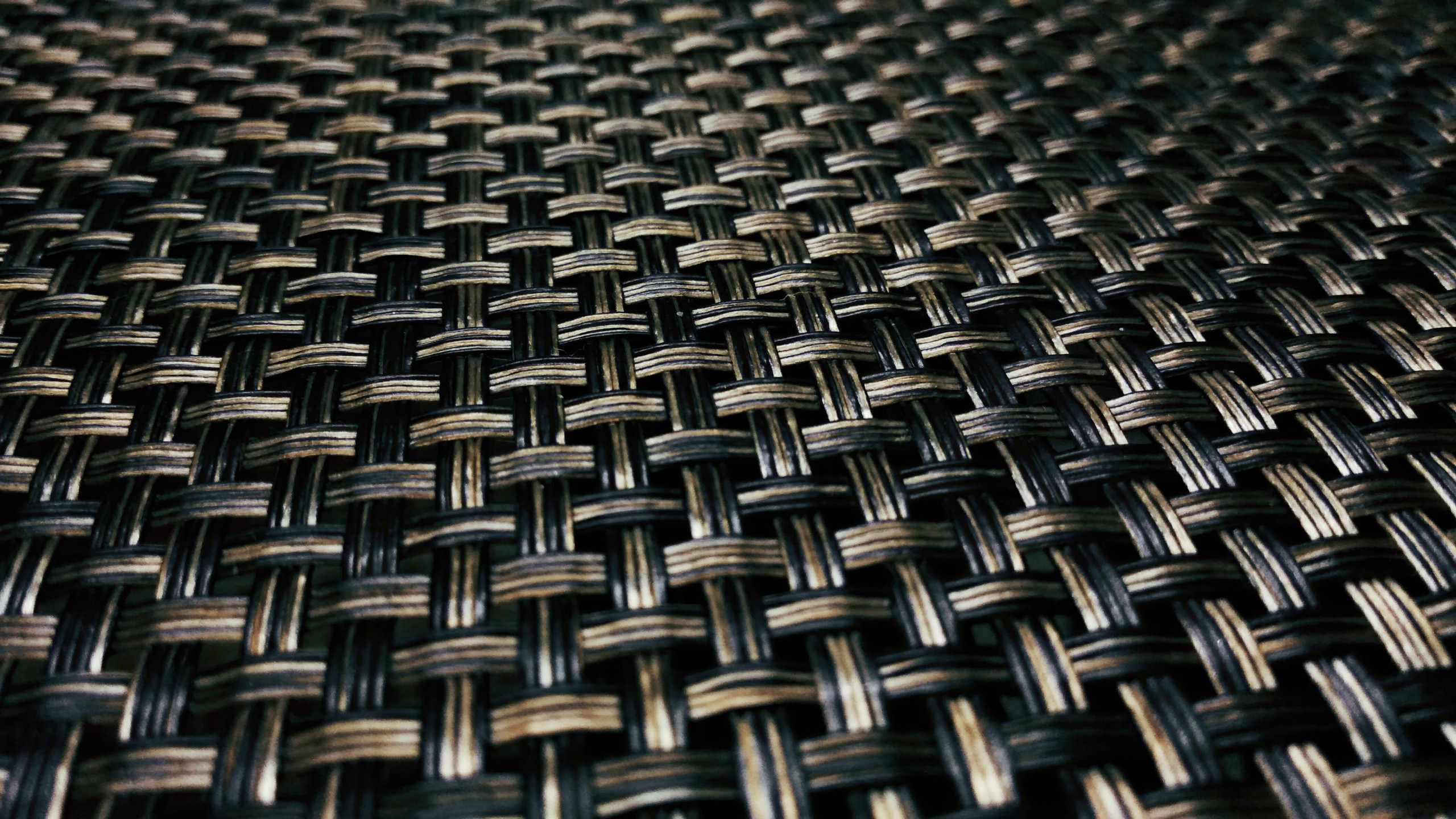 Mesh on Focus