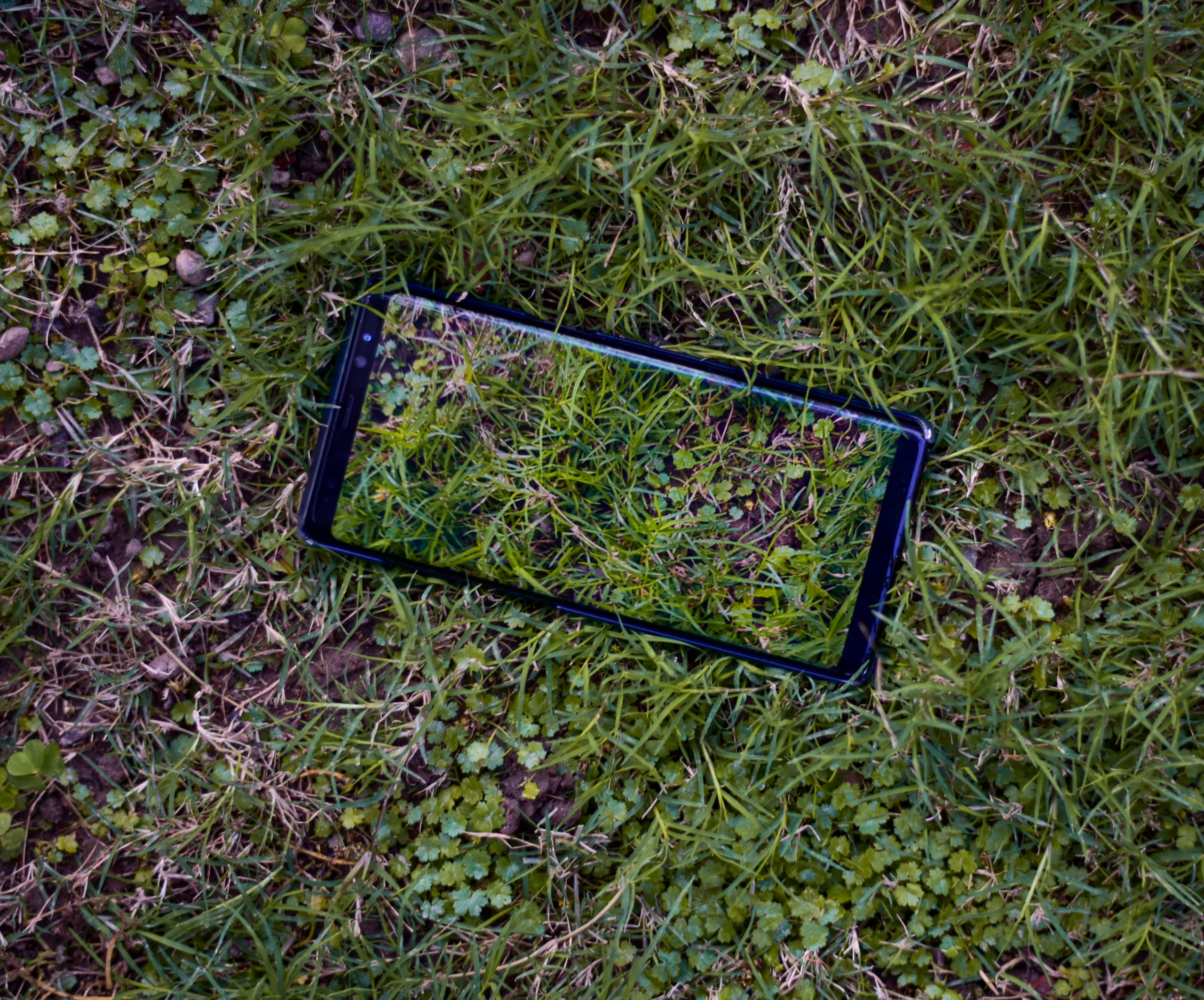 Mobile Phone Case on Grass