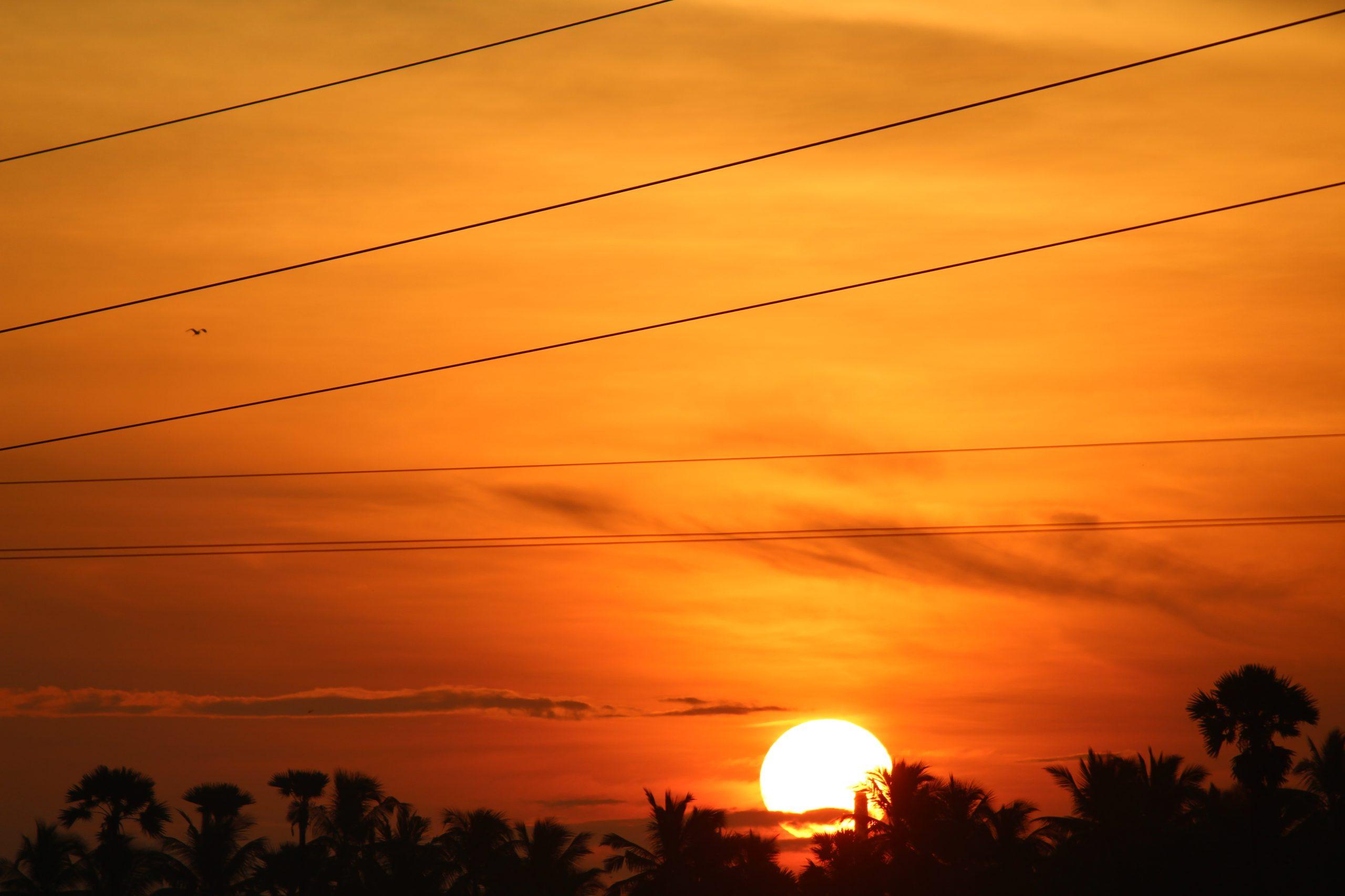 Orange Sunrise Nature