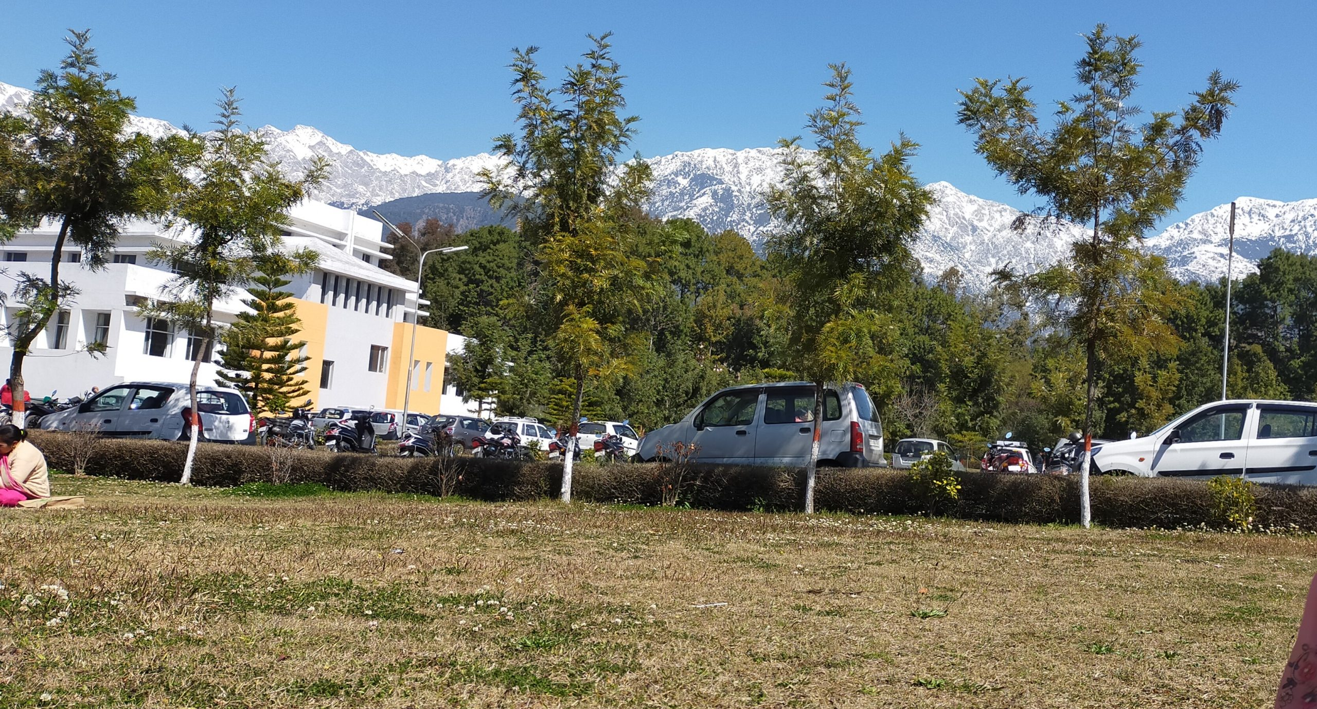 Vehicles parked near a building in Palampur