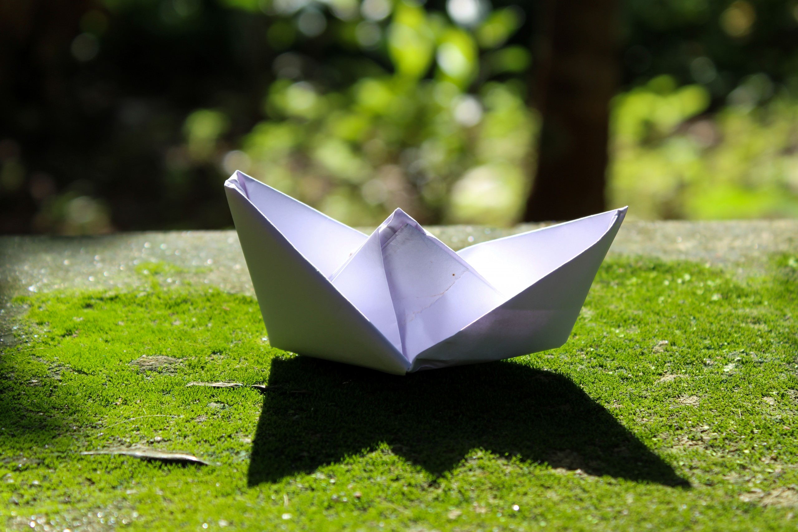 Paper boat on the grass