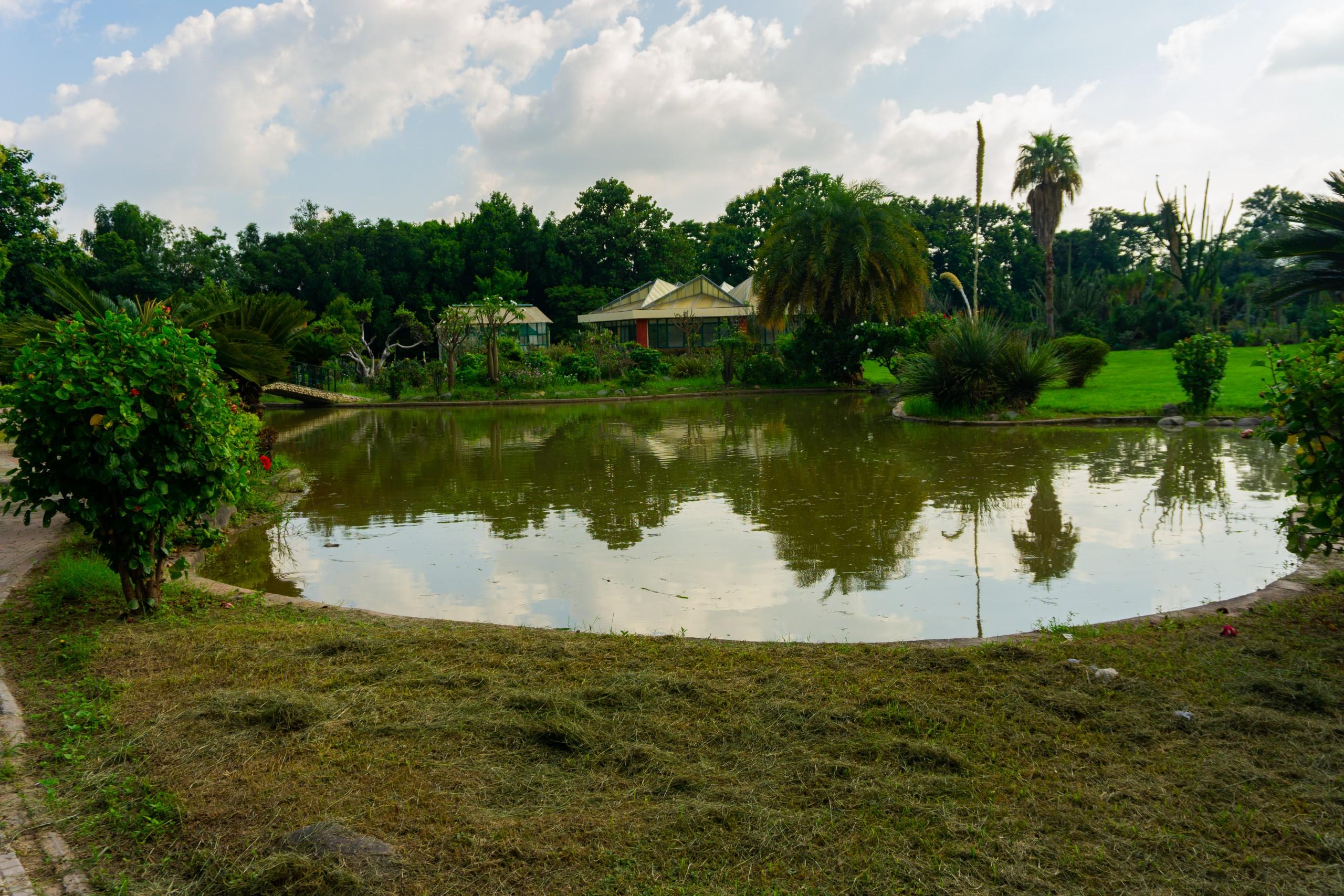 Pond in a farmhouse