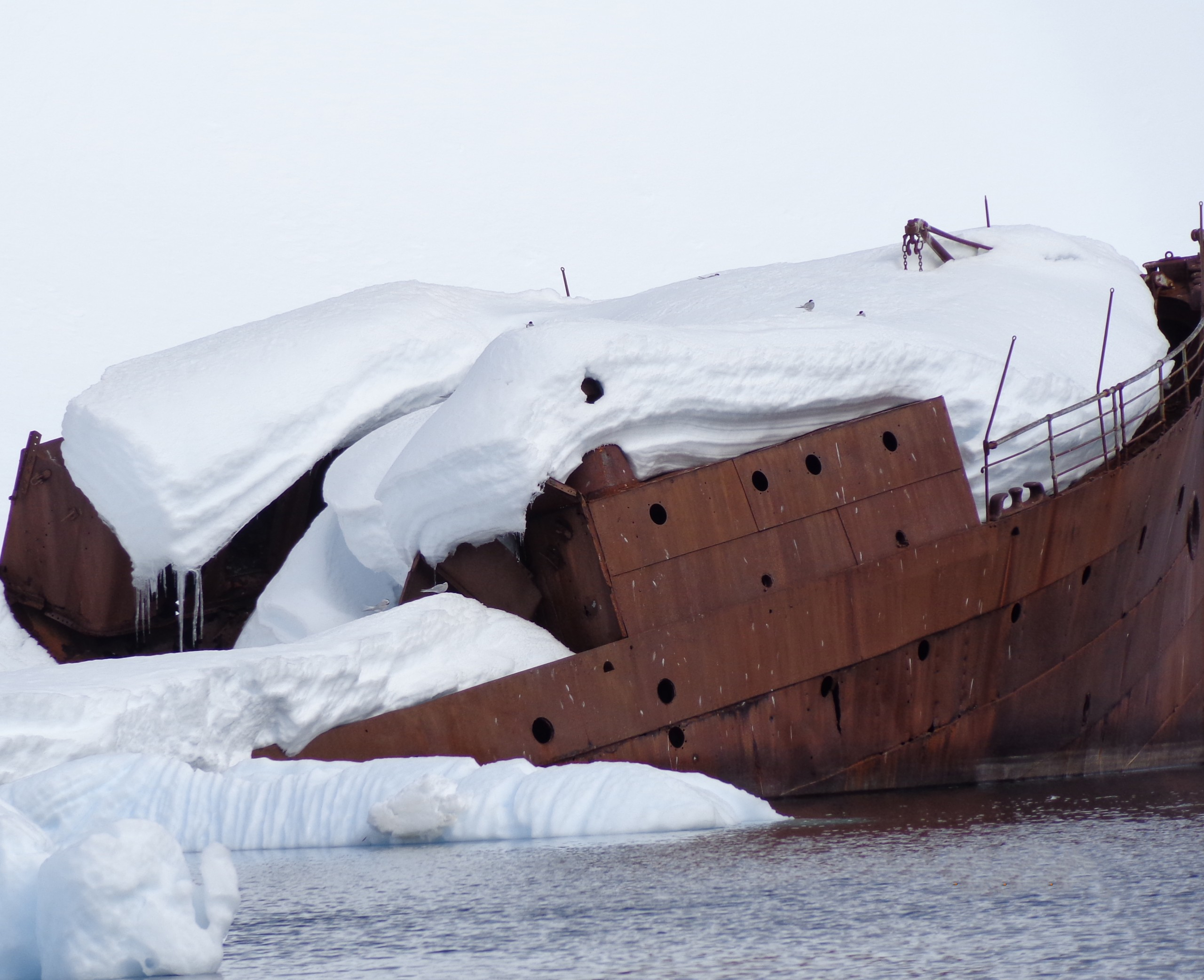 Shipwreck in the Snow