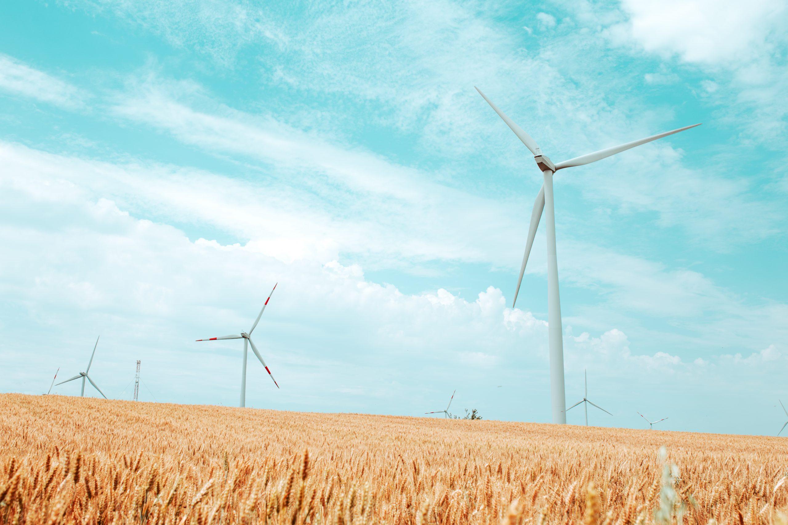 Windmill Farm in Cultivation Field