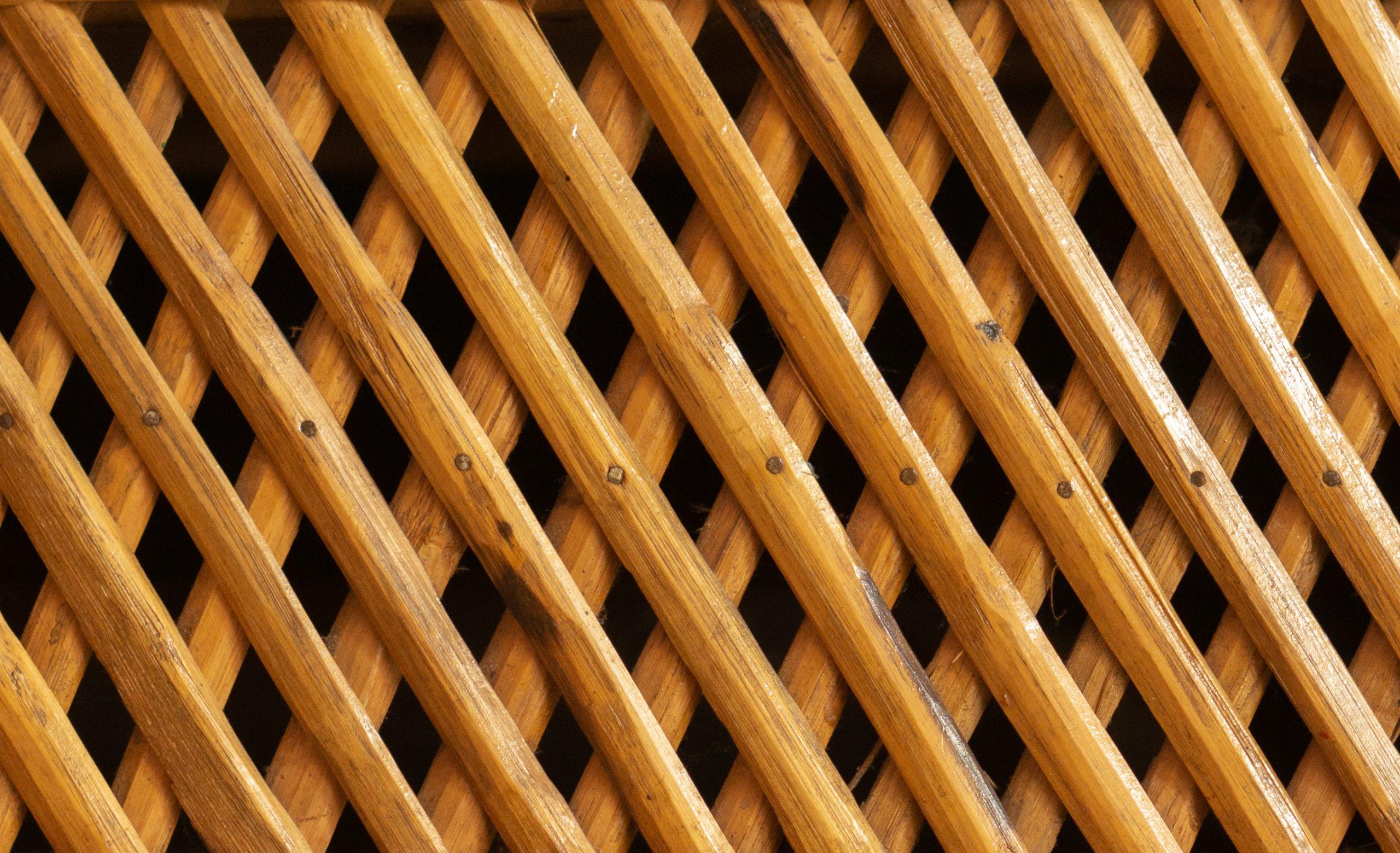 A Bamboo Mesh