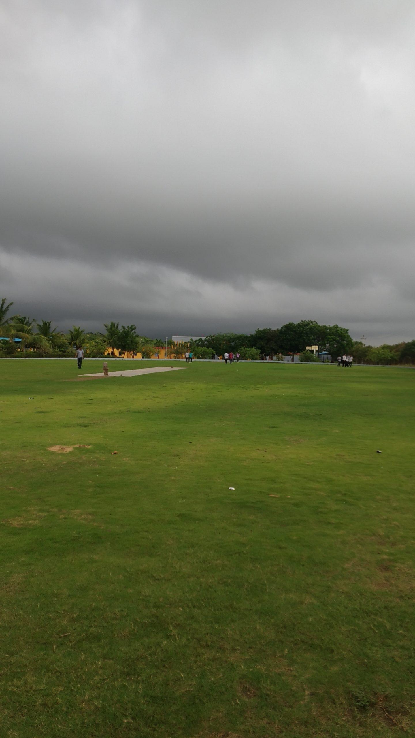 A Grass Field