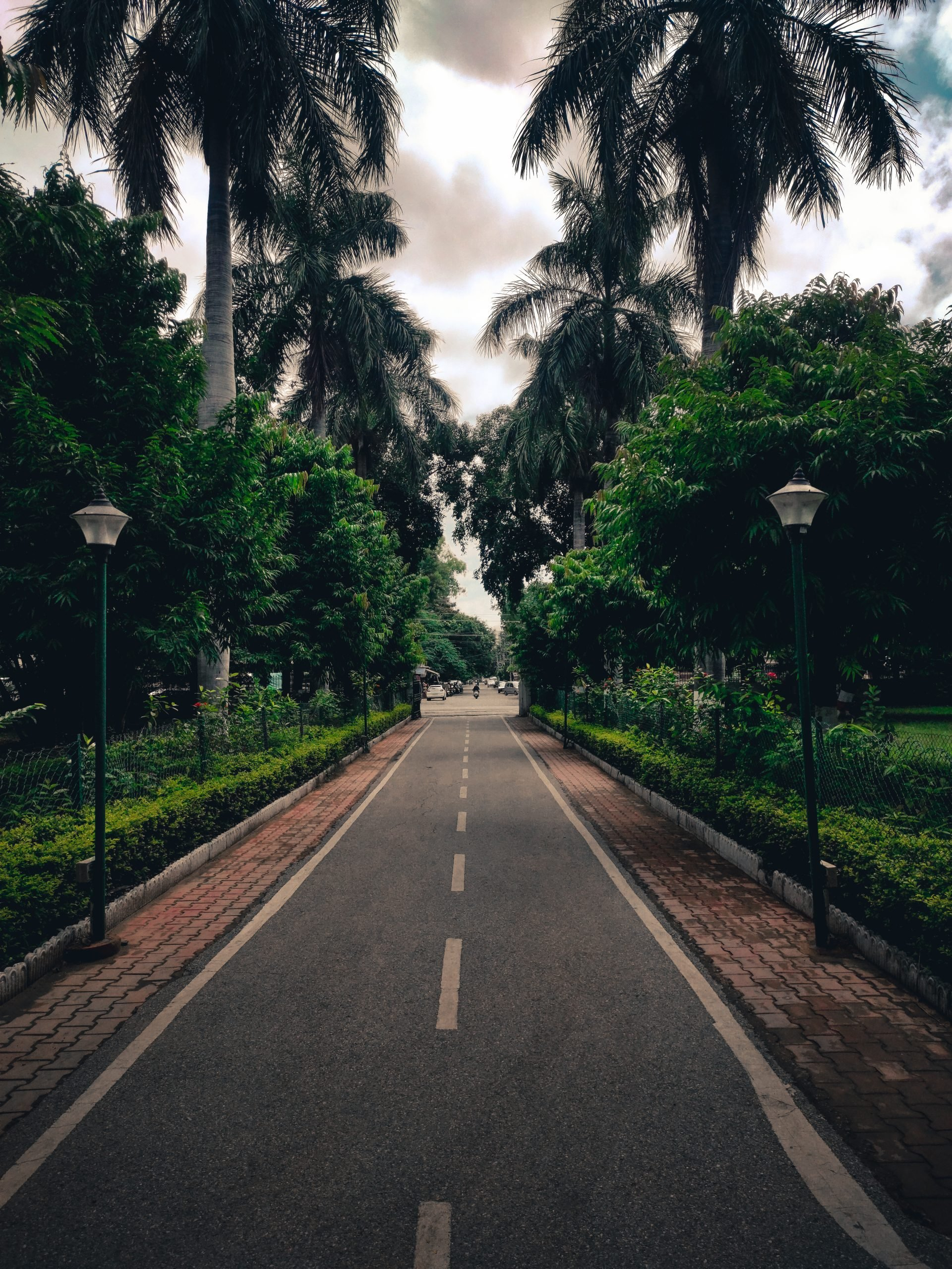 A Long Street Road