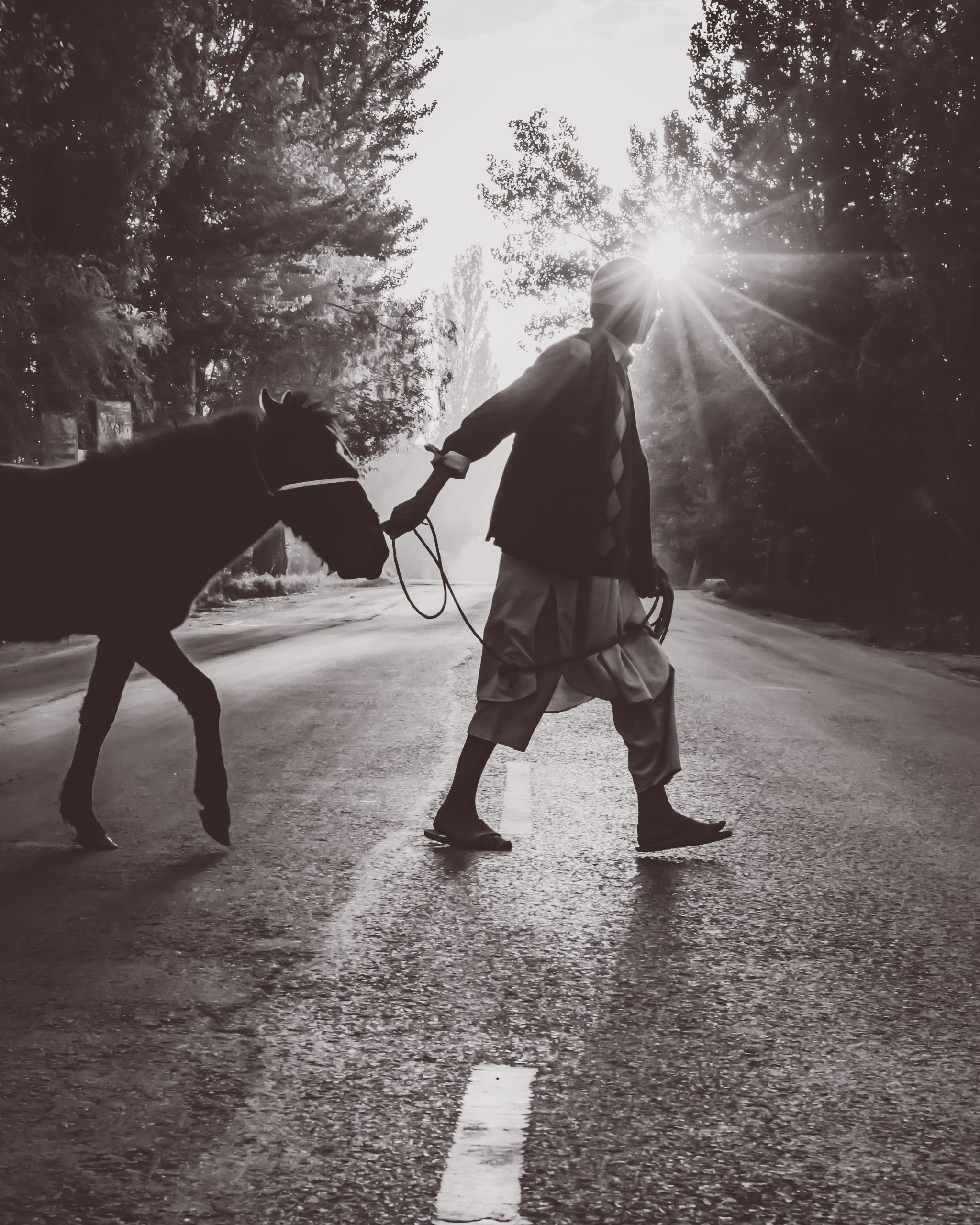 An Old man crossing road with his horse.