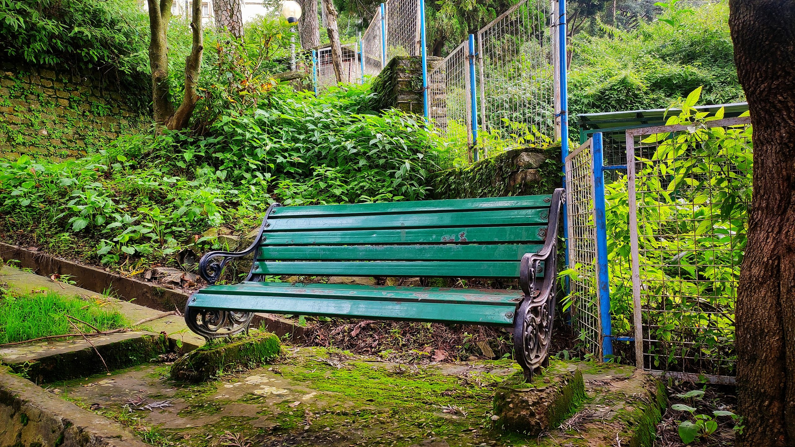 A bench in a public park