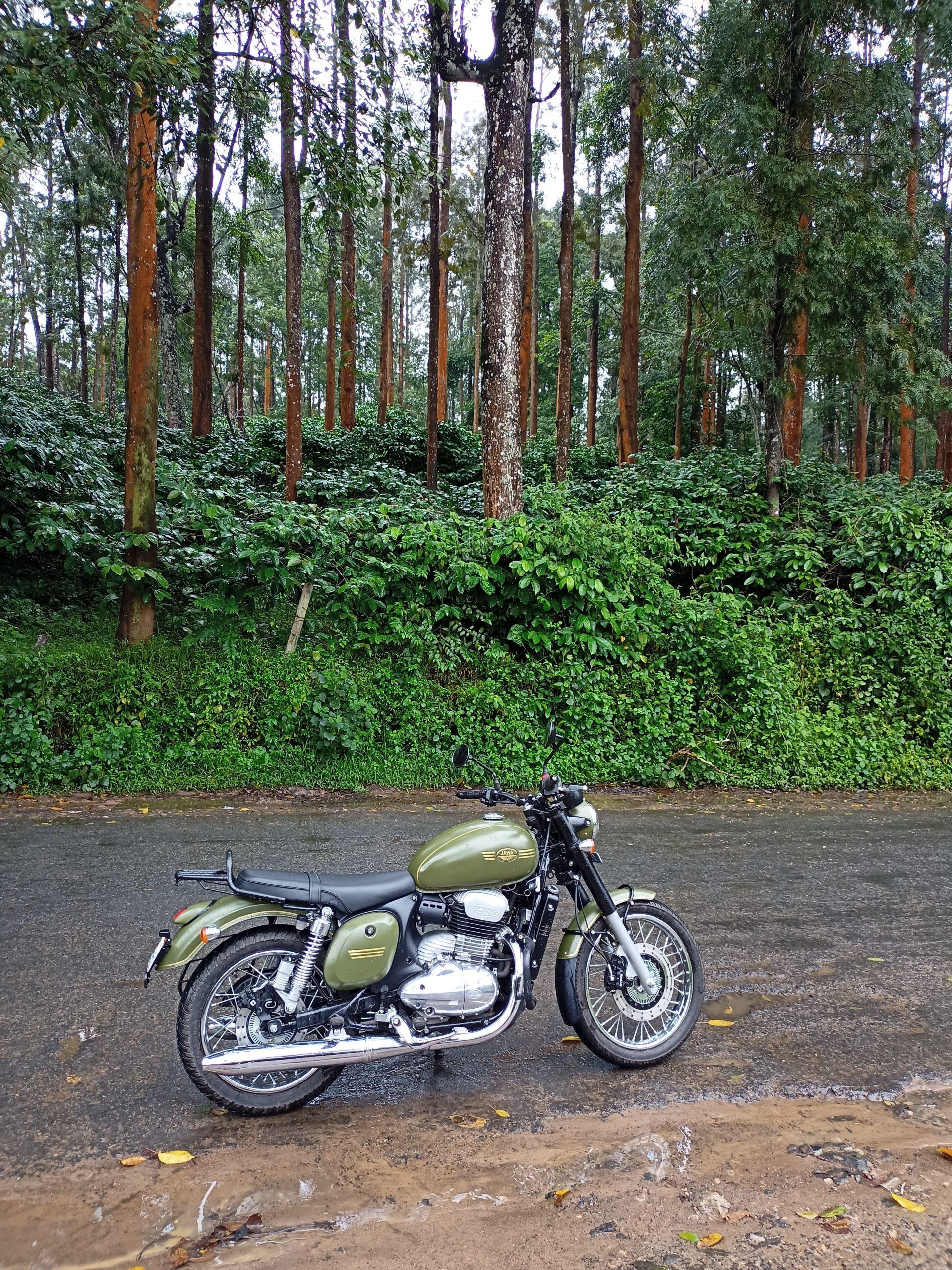 A motorbike in a jungle