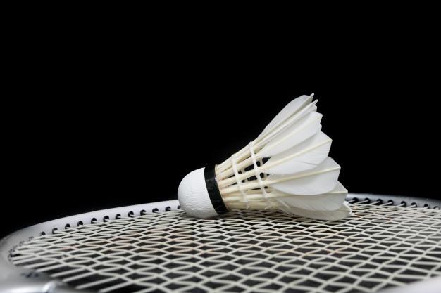 Badminton and Shuttlecock