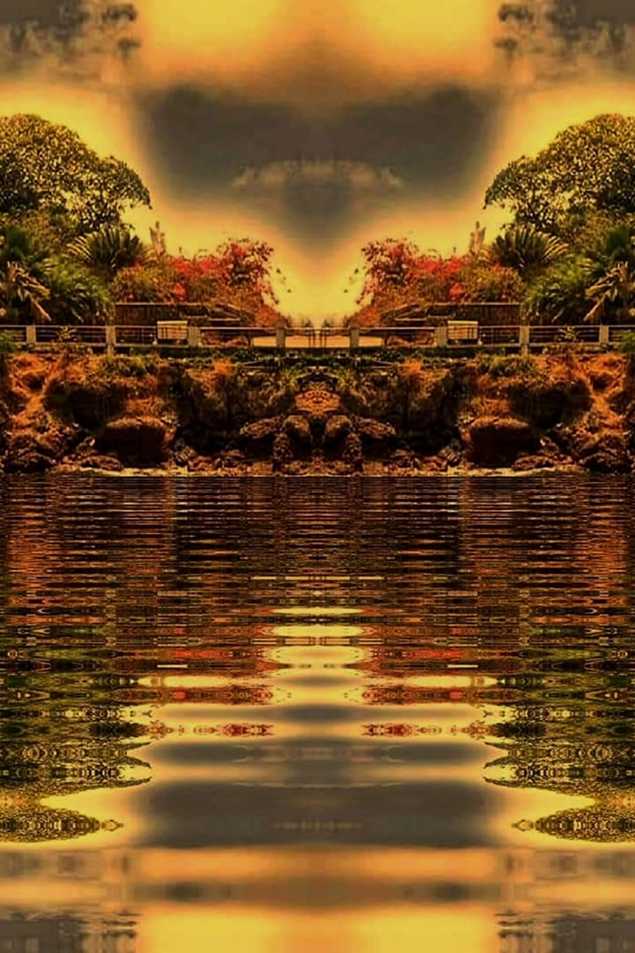 Beautiful Park Sunset Nature