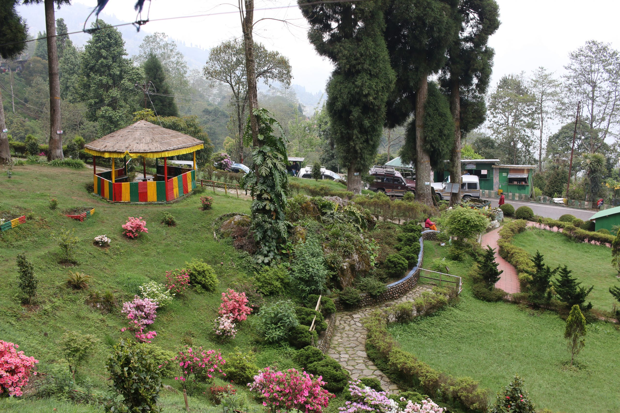A garden on a hill station