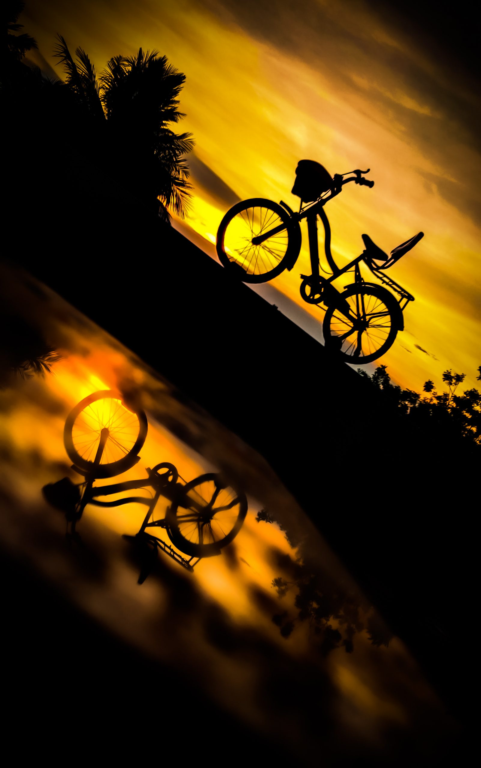 reflection of cycle in water