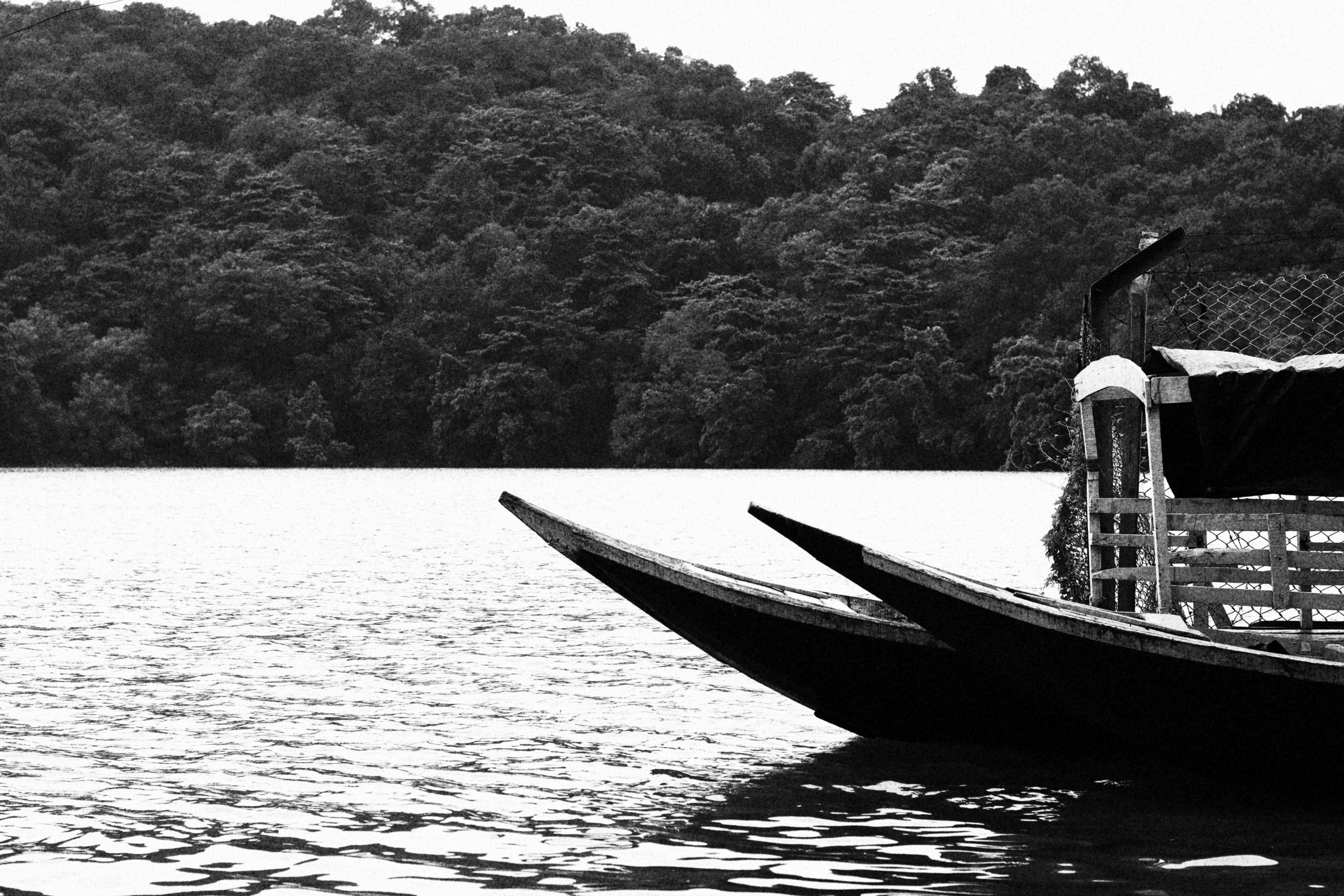 Boats and nature in a black and white color