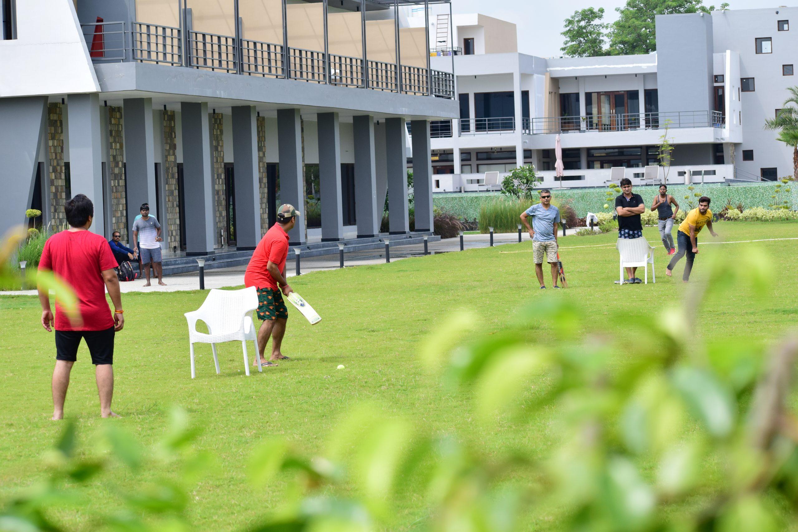 Boys playing cricket on lawn