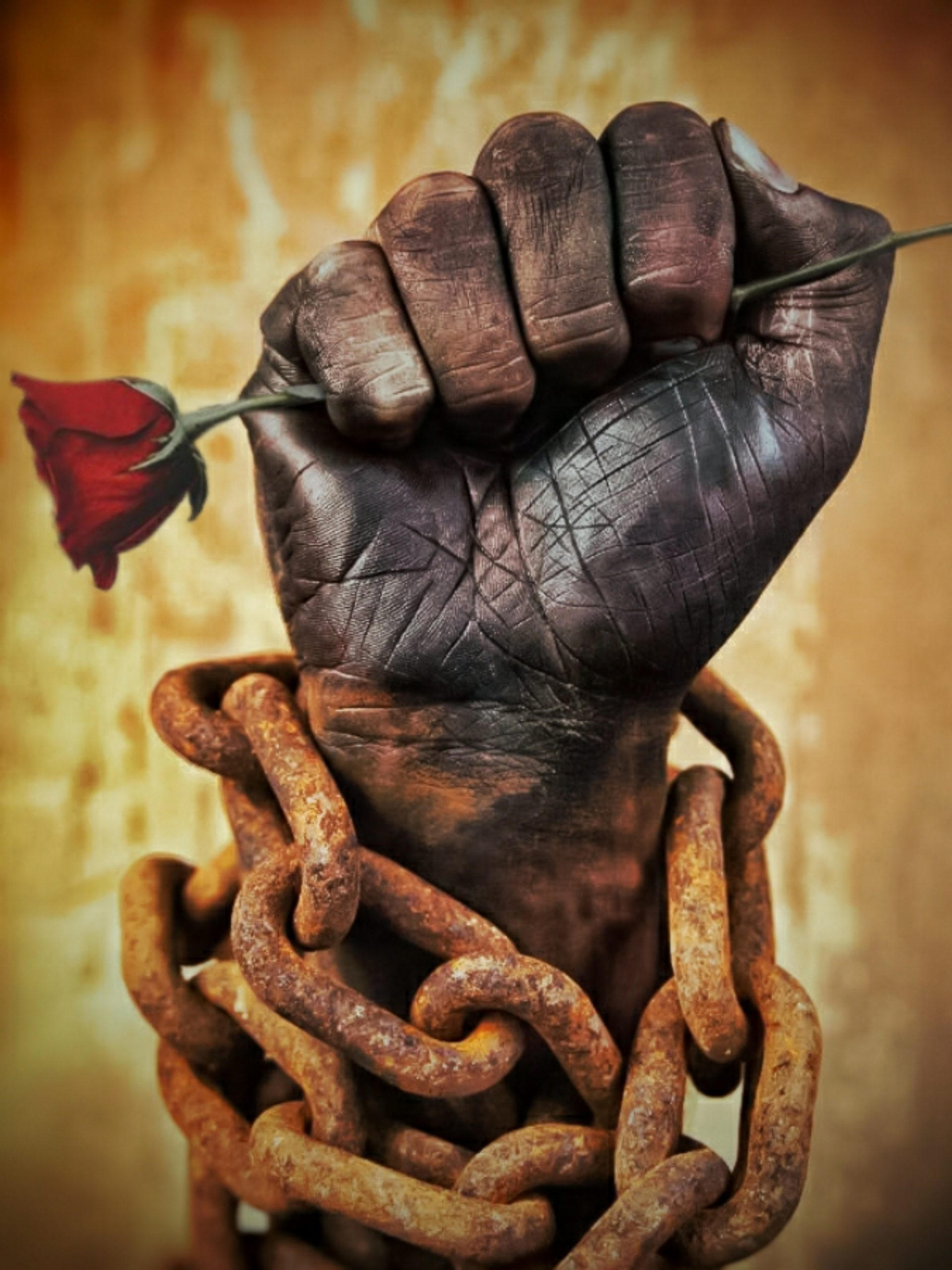 Chained hand with a rose
