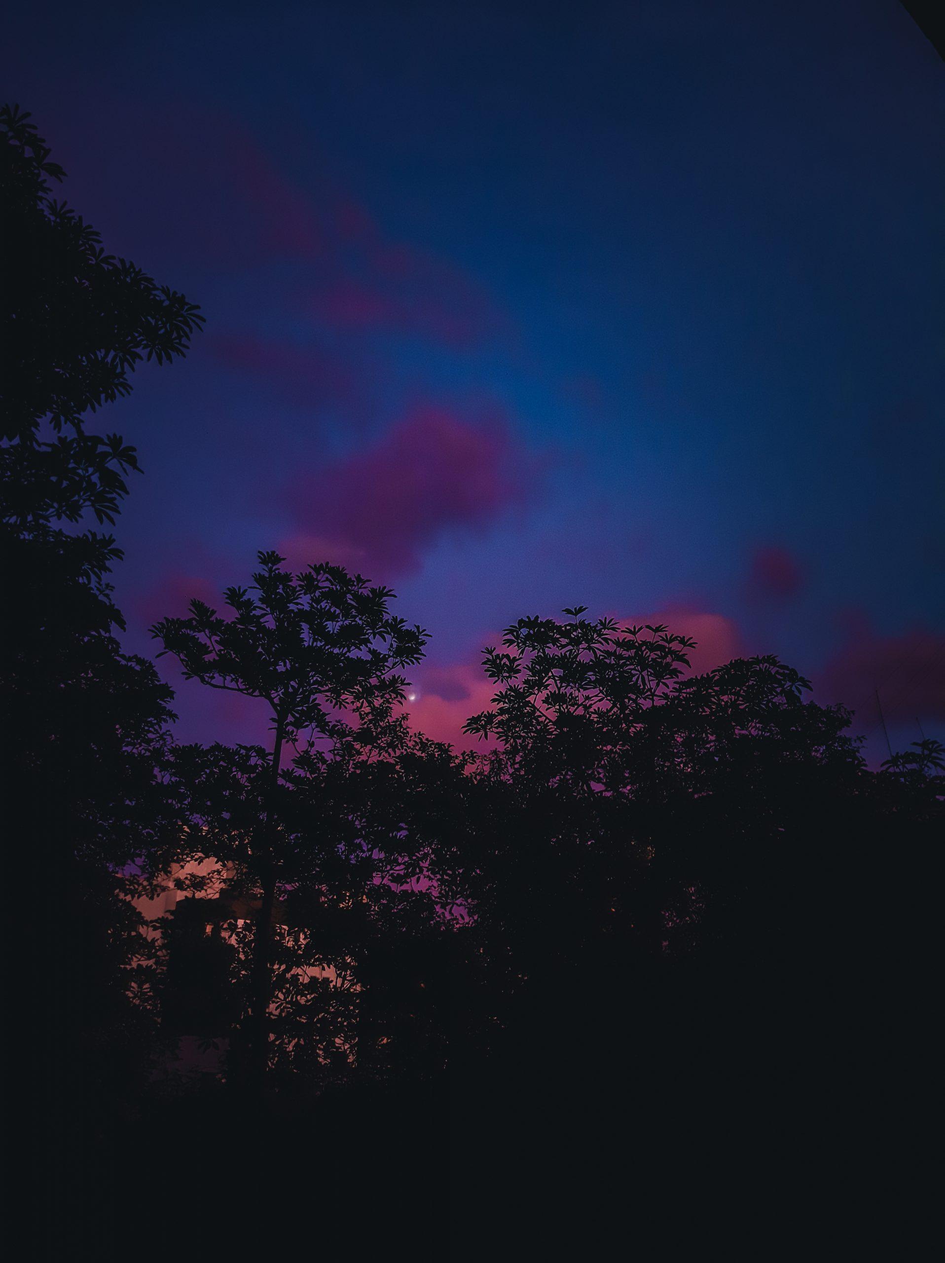 Aesthetic sky in the dark.