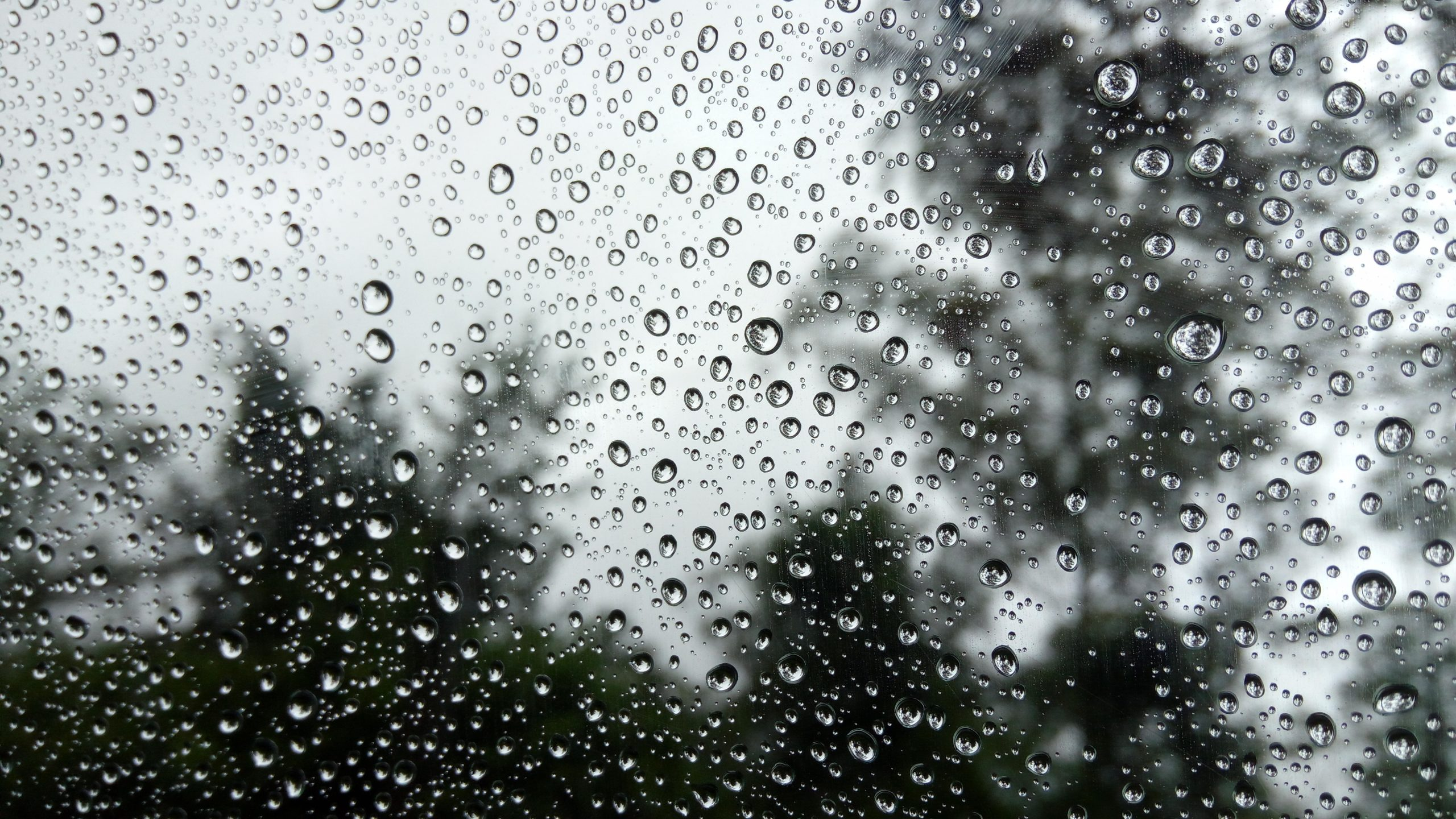 Dewdrops on the Glass