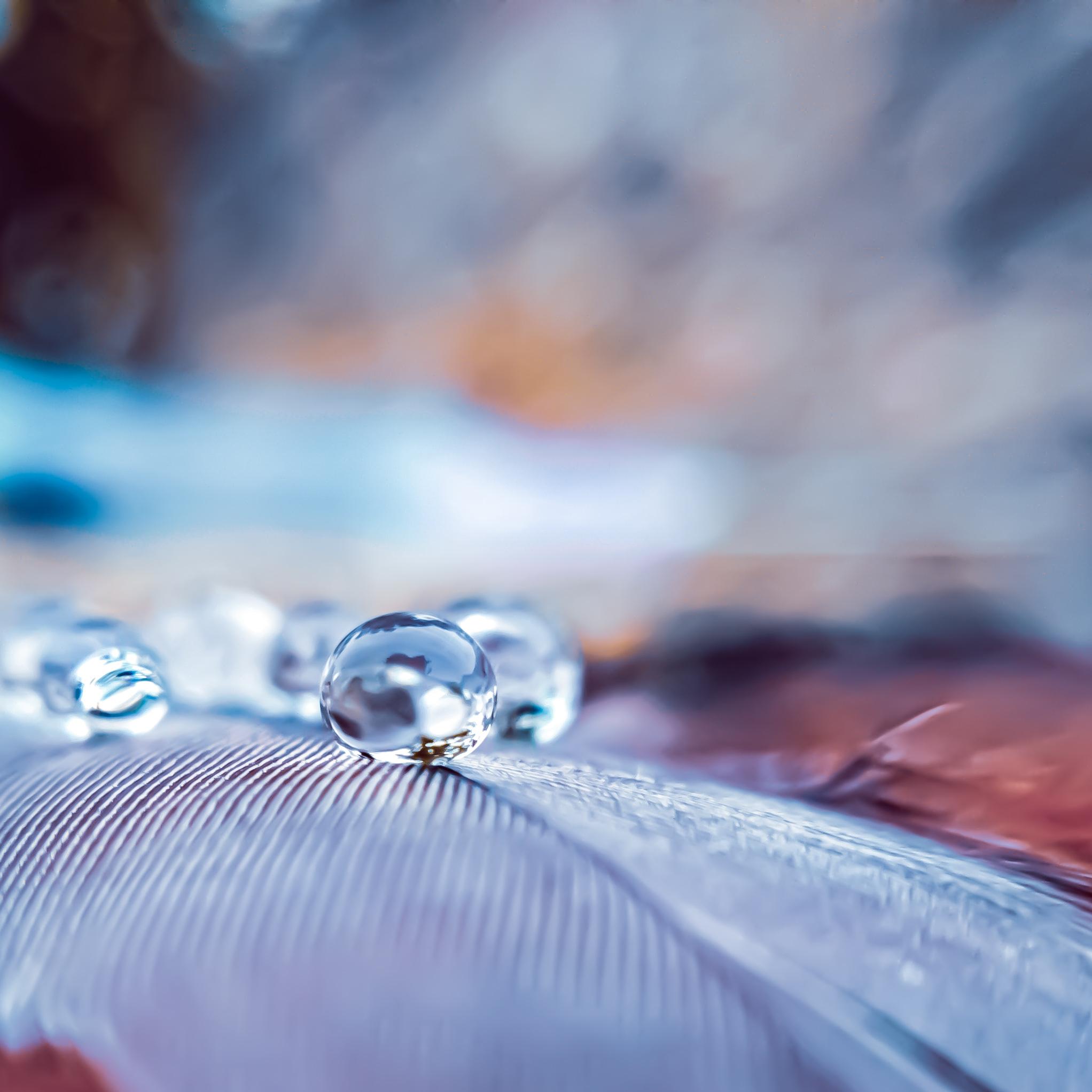 Droplet on Focus