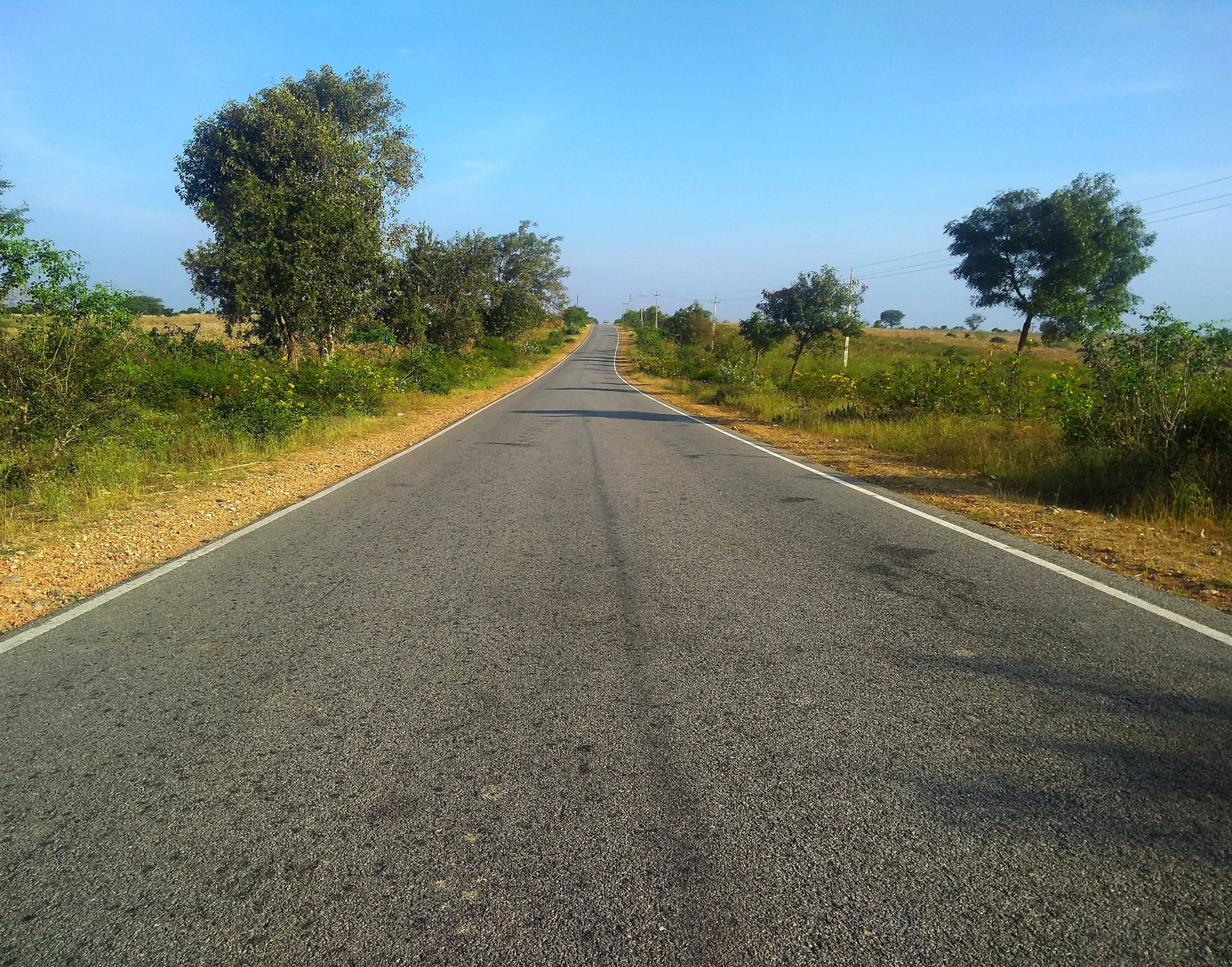 Empty Long Road