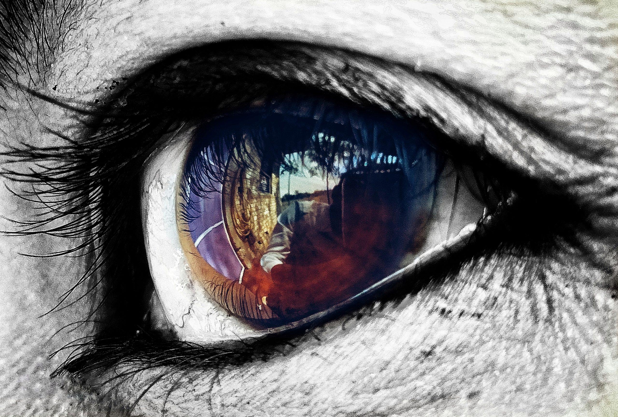Eye on Focus