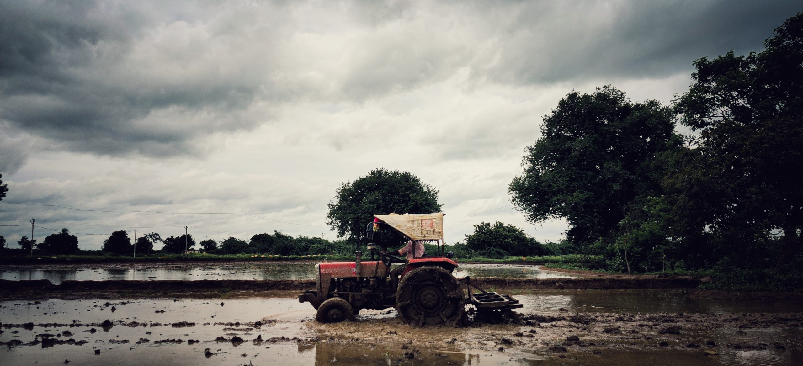 A farming tractor in a field