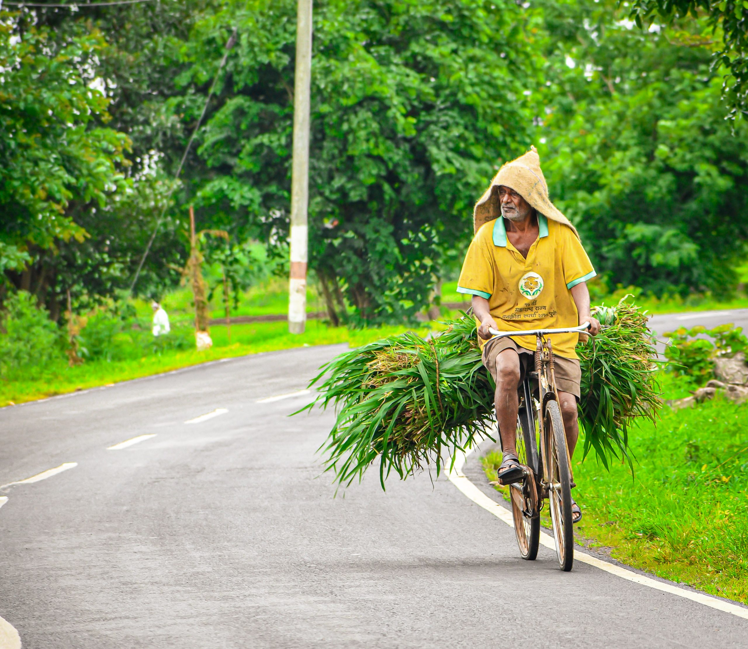 Farmer riding bicycle carrying his harvested crops