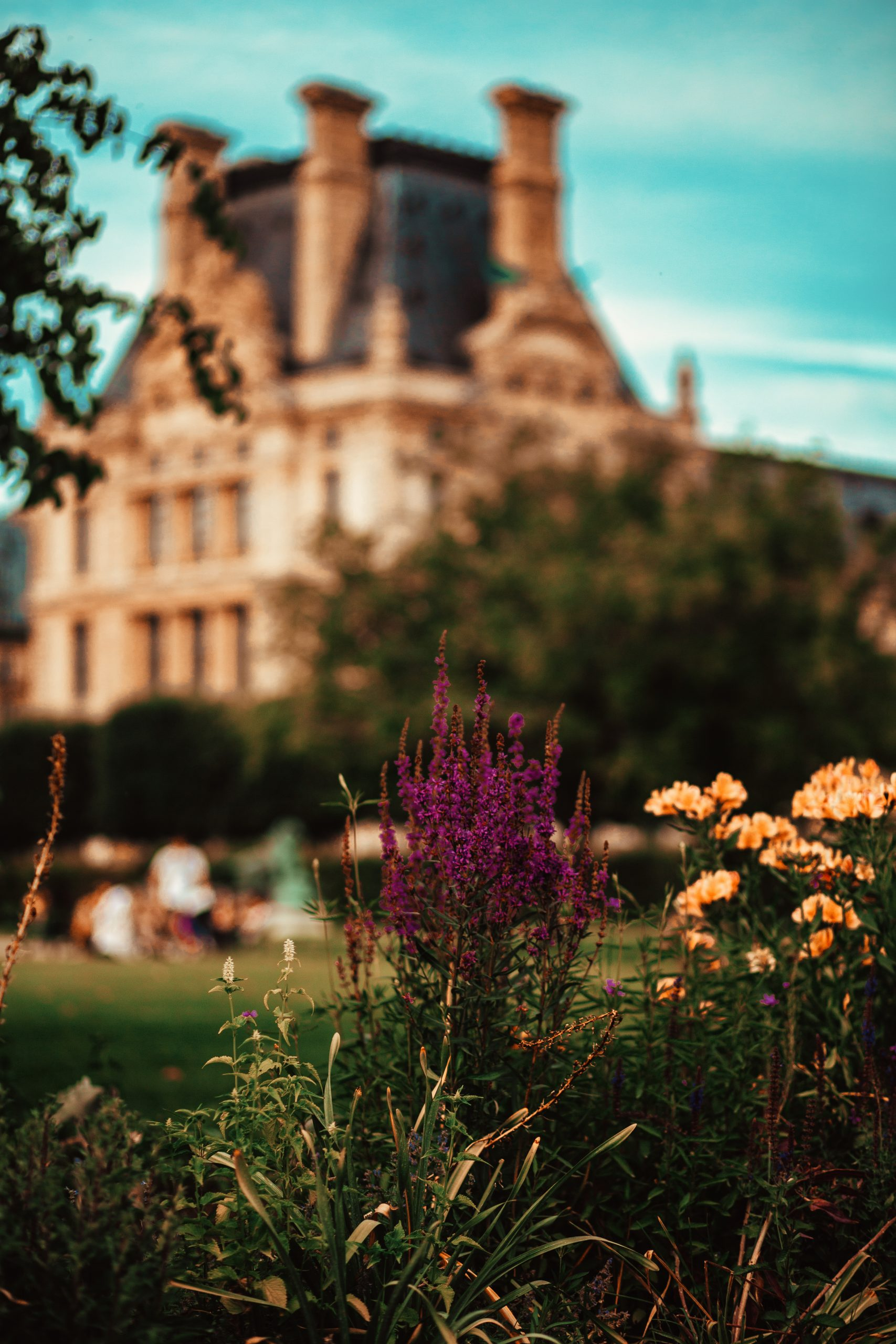 Flowers in park with castle in the background