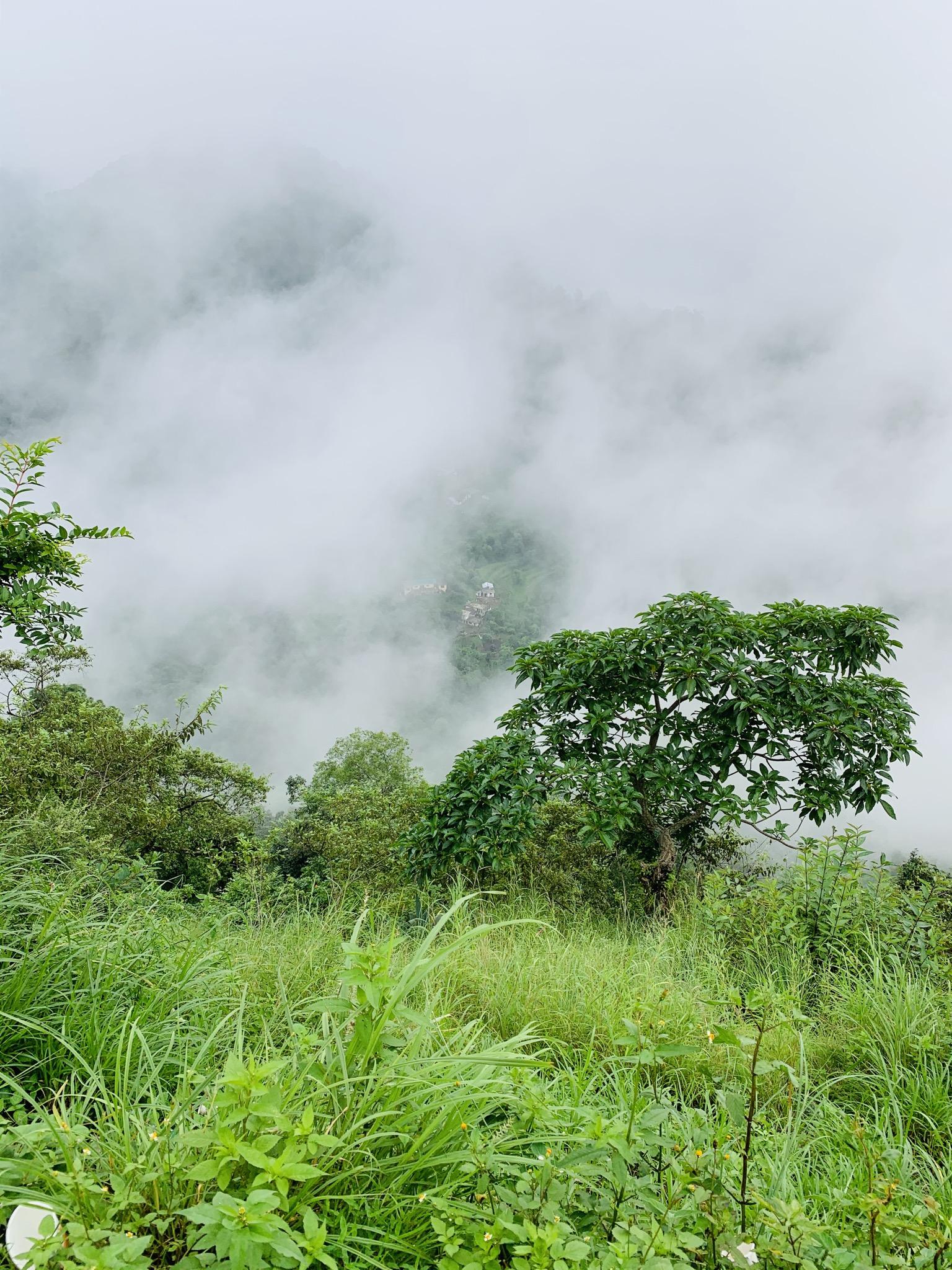 Foggy Mountain Scenery