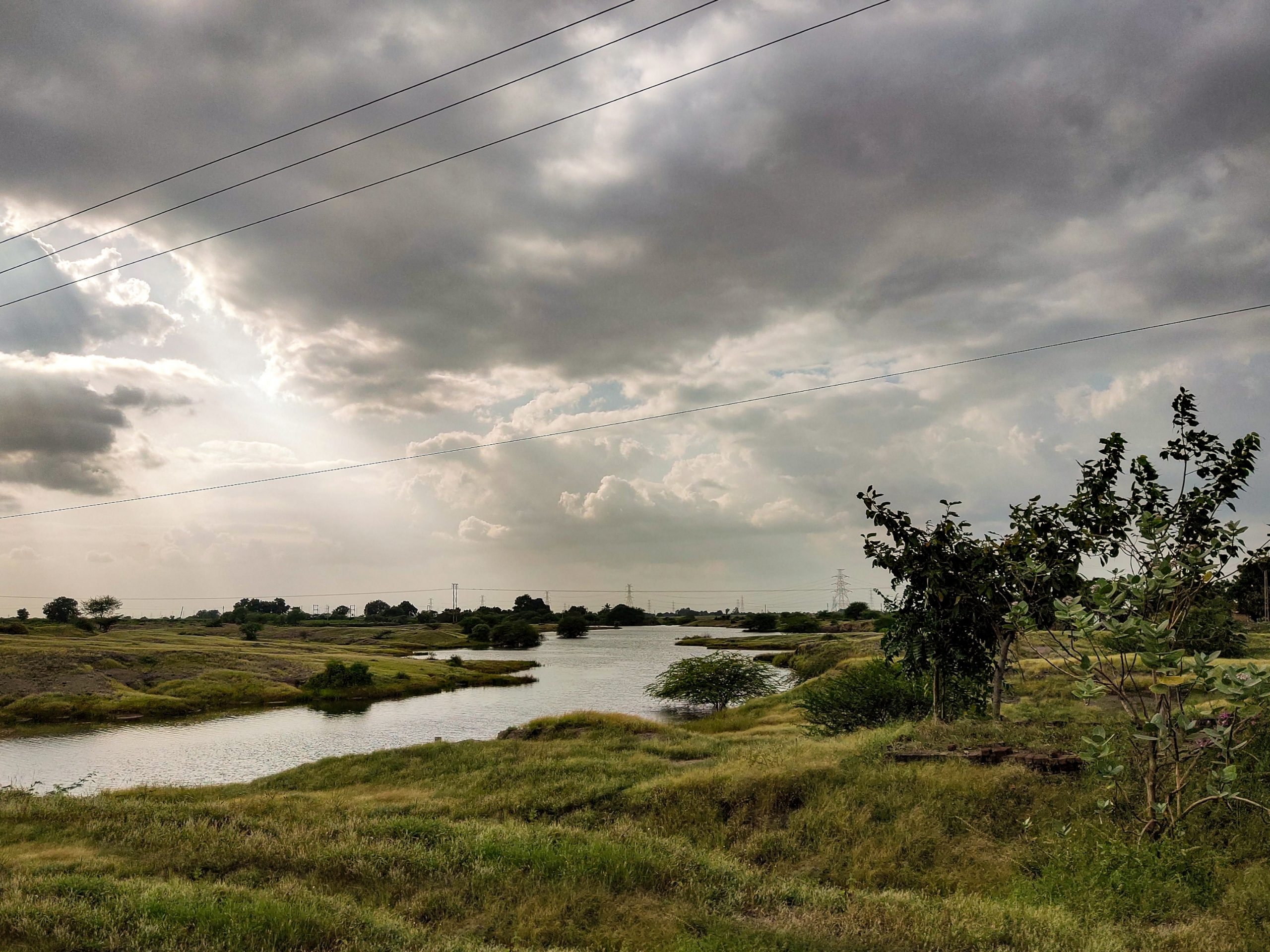 Freshwater Marsh in a Land