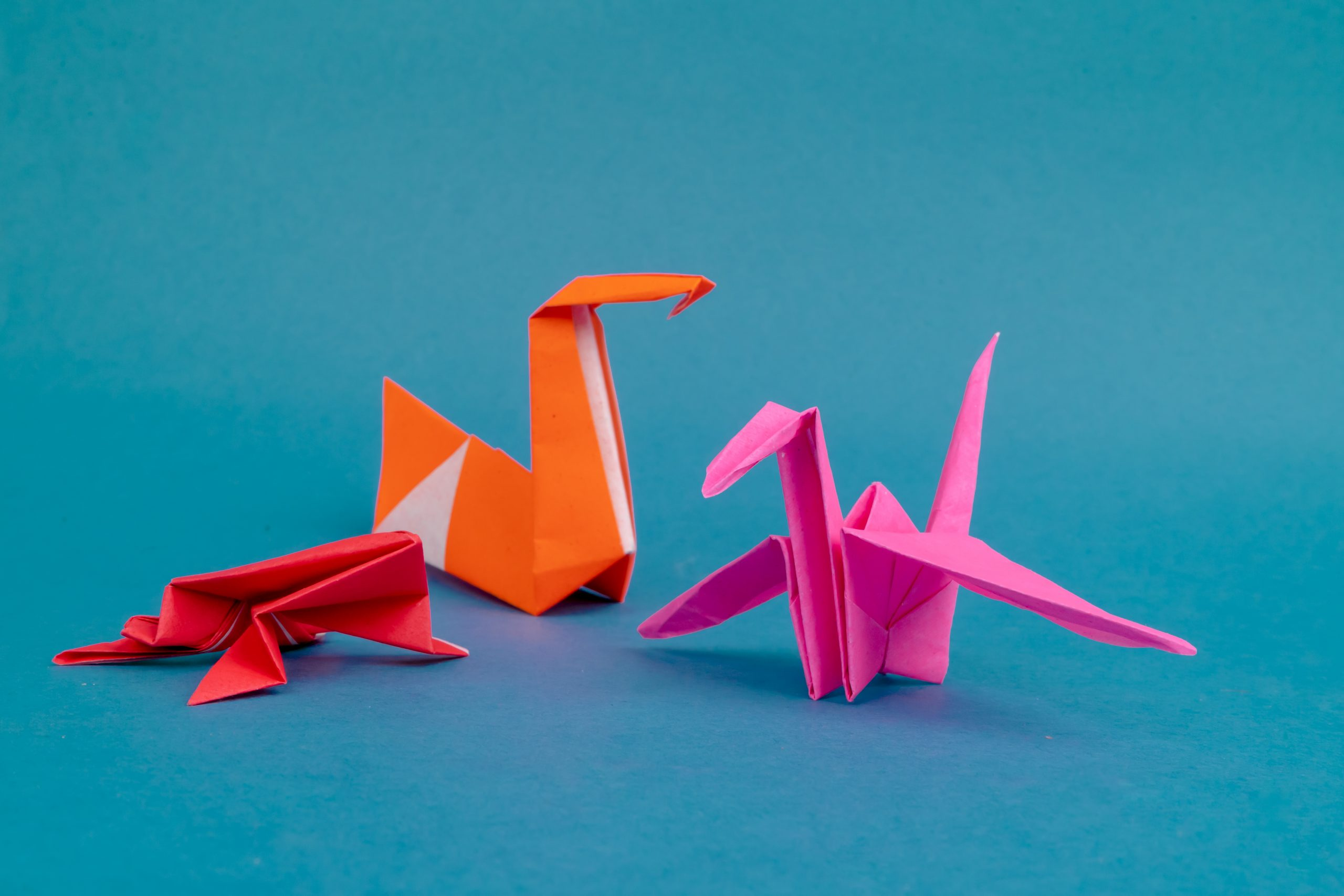 Frog, swan and crane origami