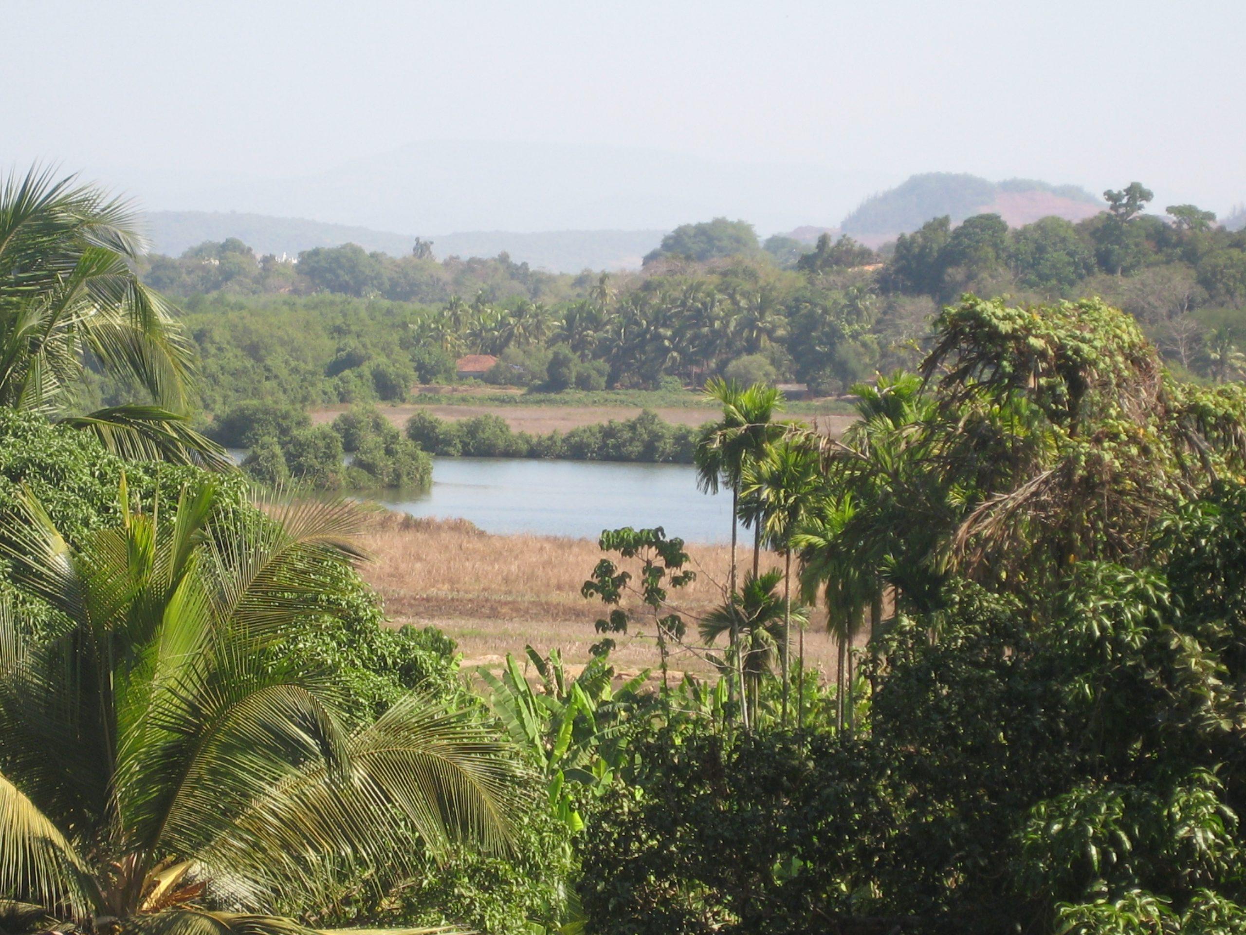 Goa Countryside