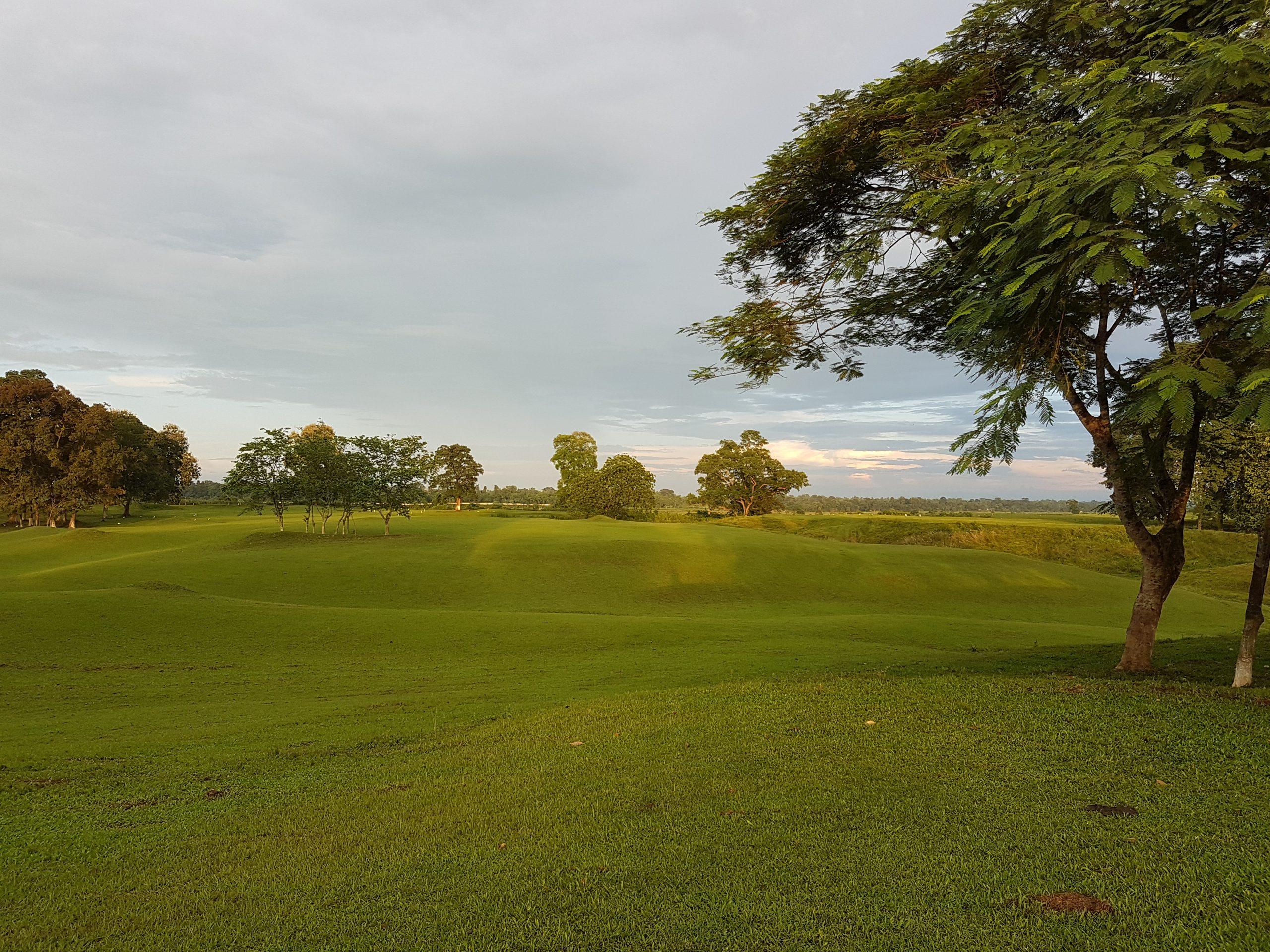 Golf Field View