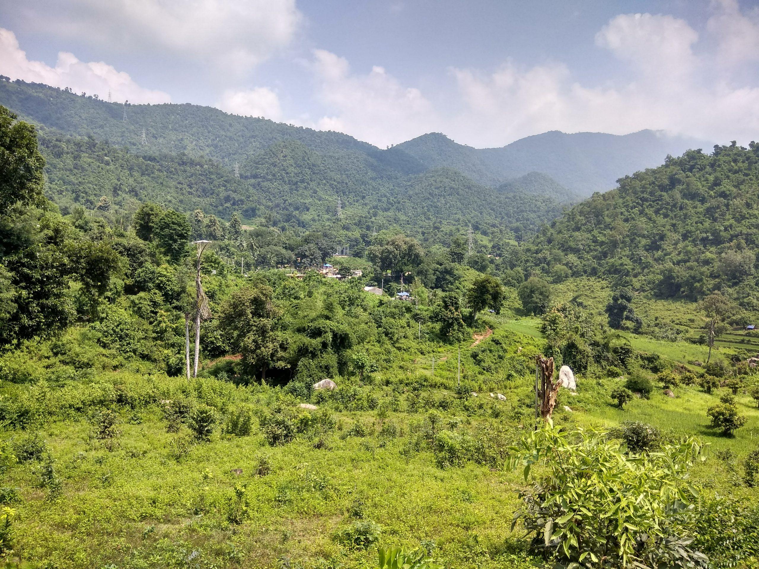 Greenery of Araku Valley, Vishakhapatnam
