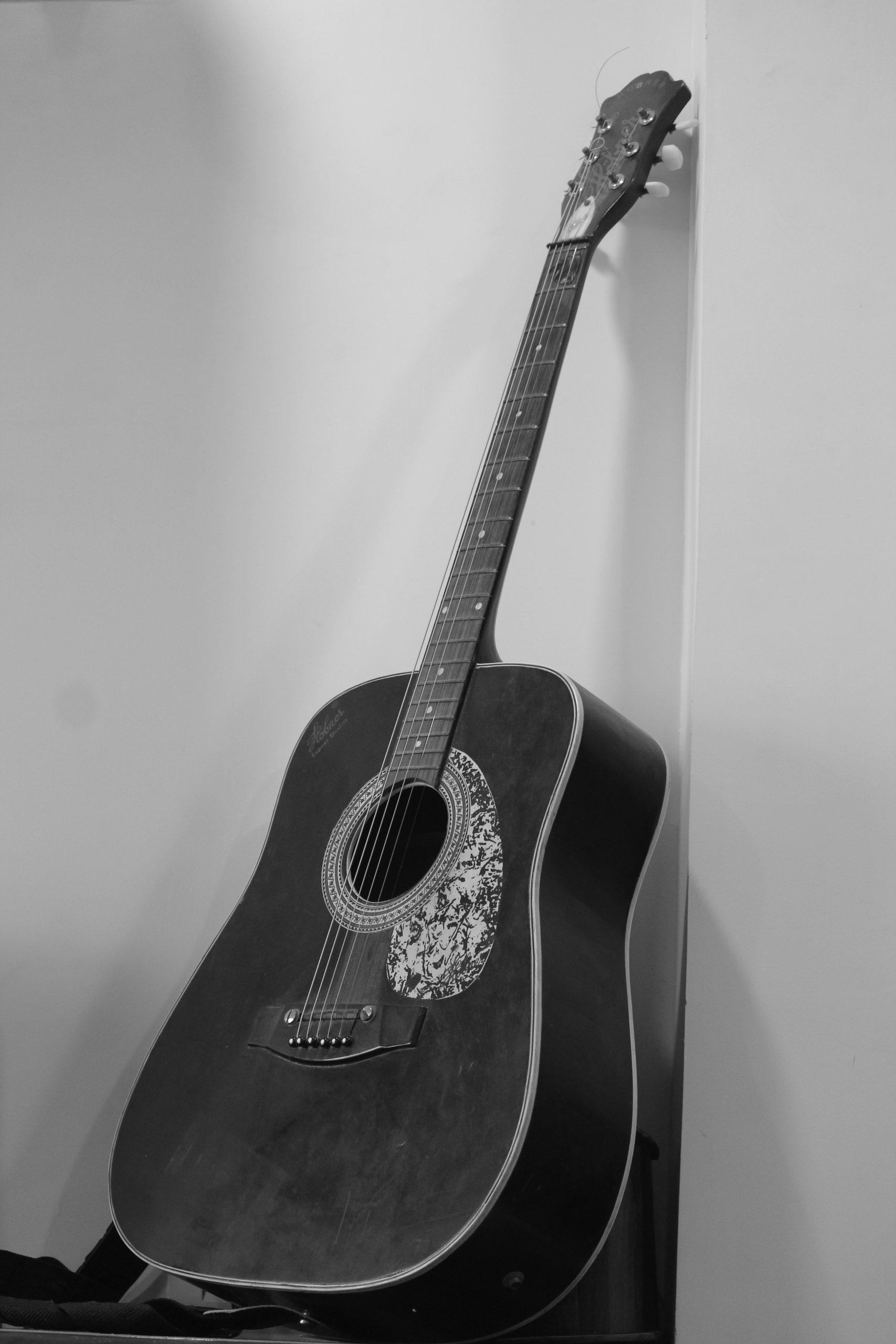 Guitar Monochrome