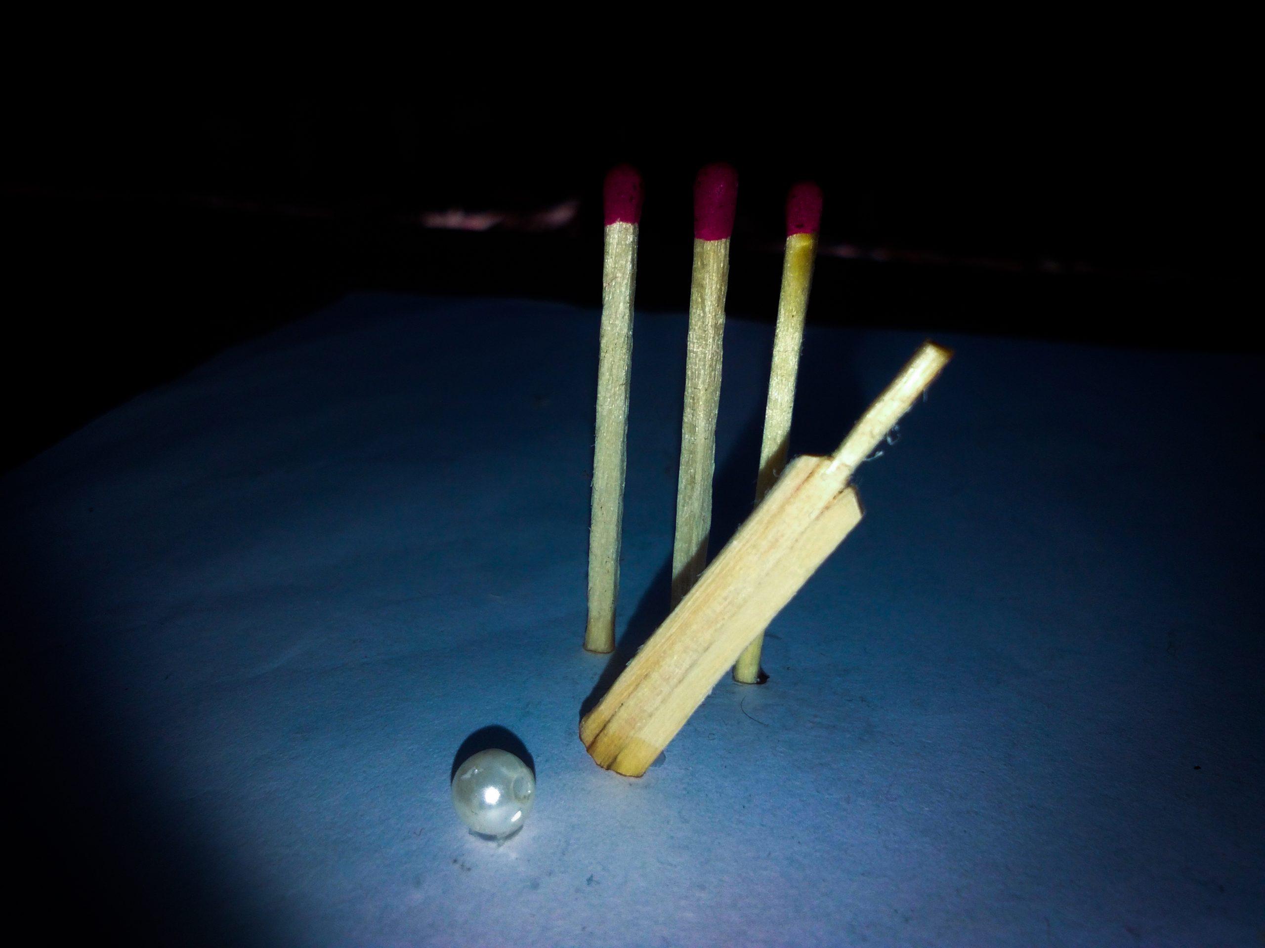 Handmade cricket bat and wickets