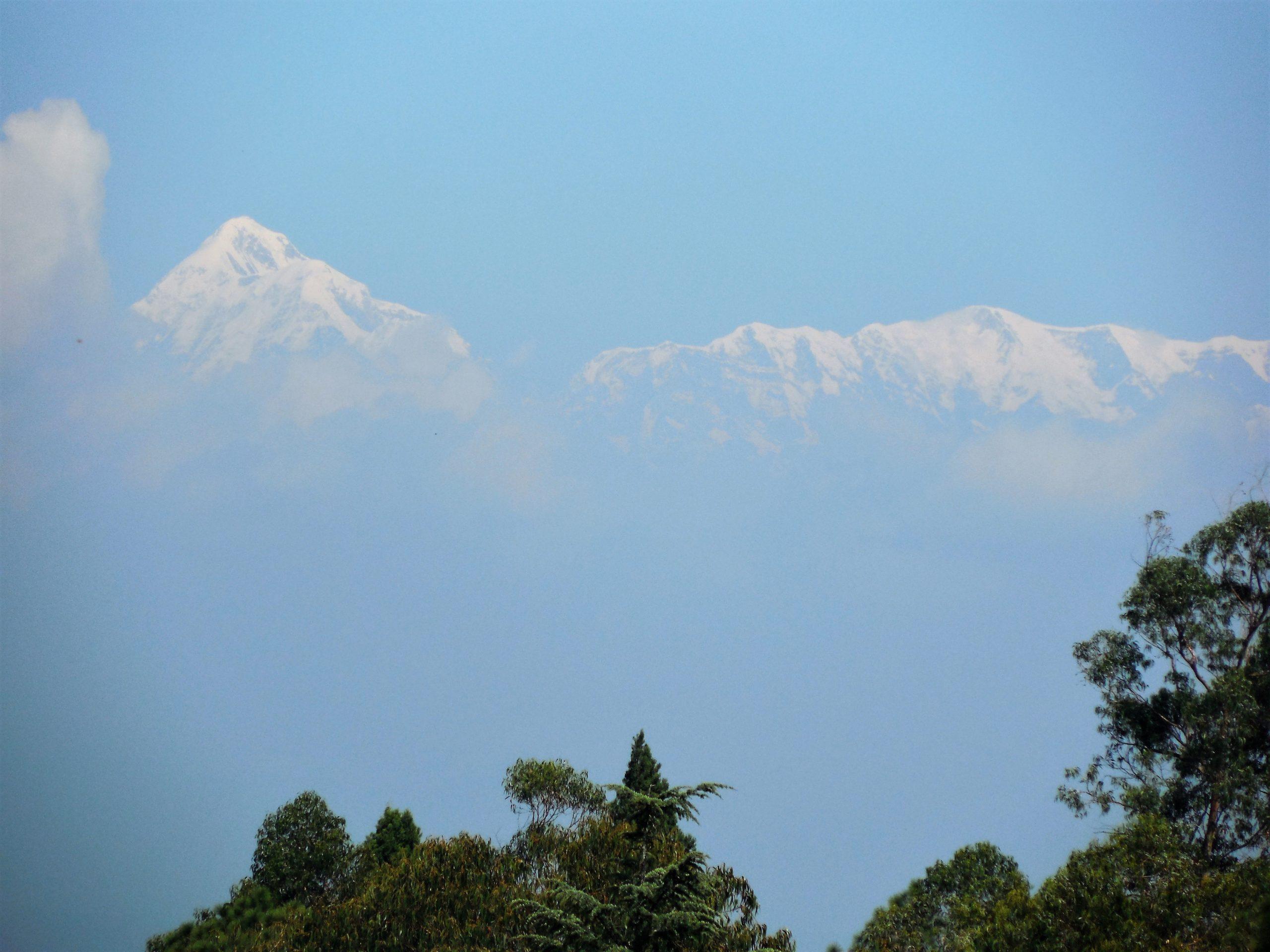 Himalayan peaks view from Ranikhet