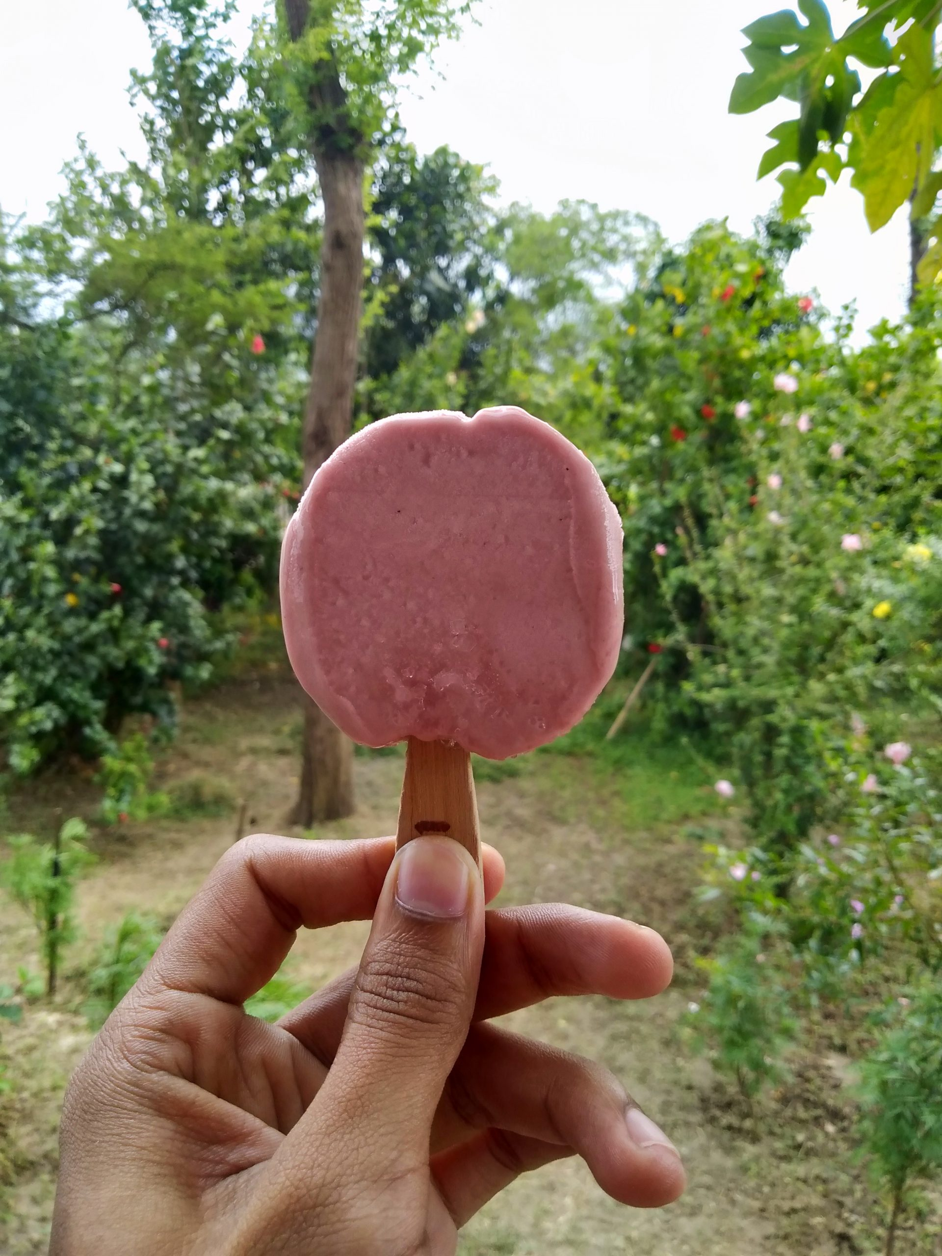 Ice cream pop in hand