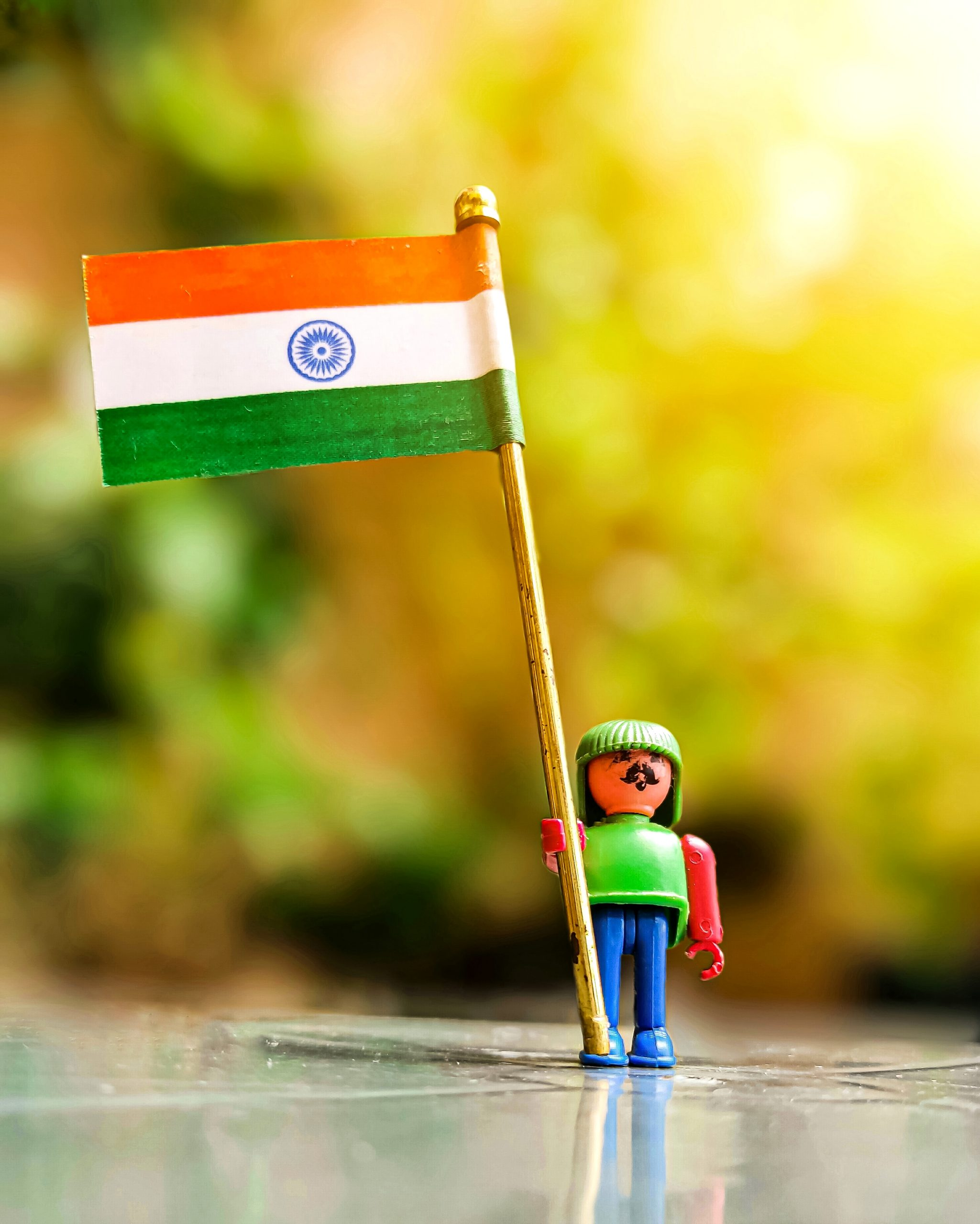 Toy holding a Flag of India